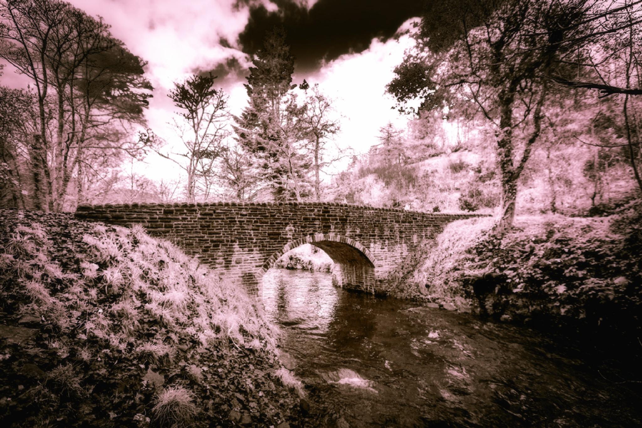 Bridge over stream by Gary Martin