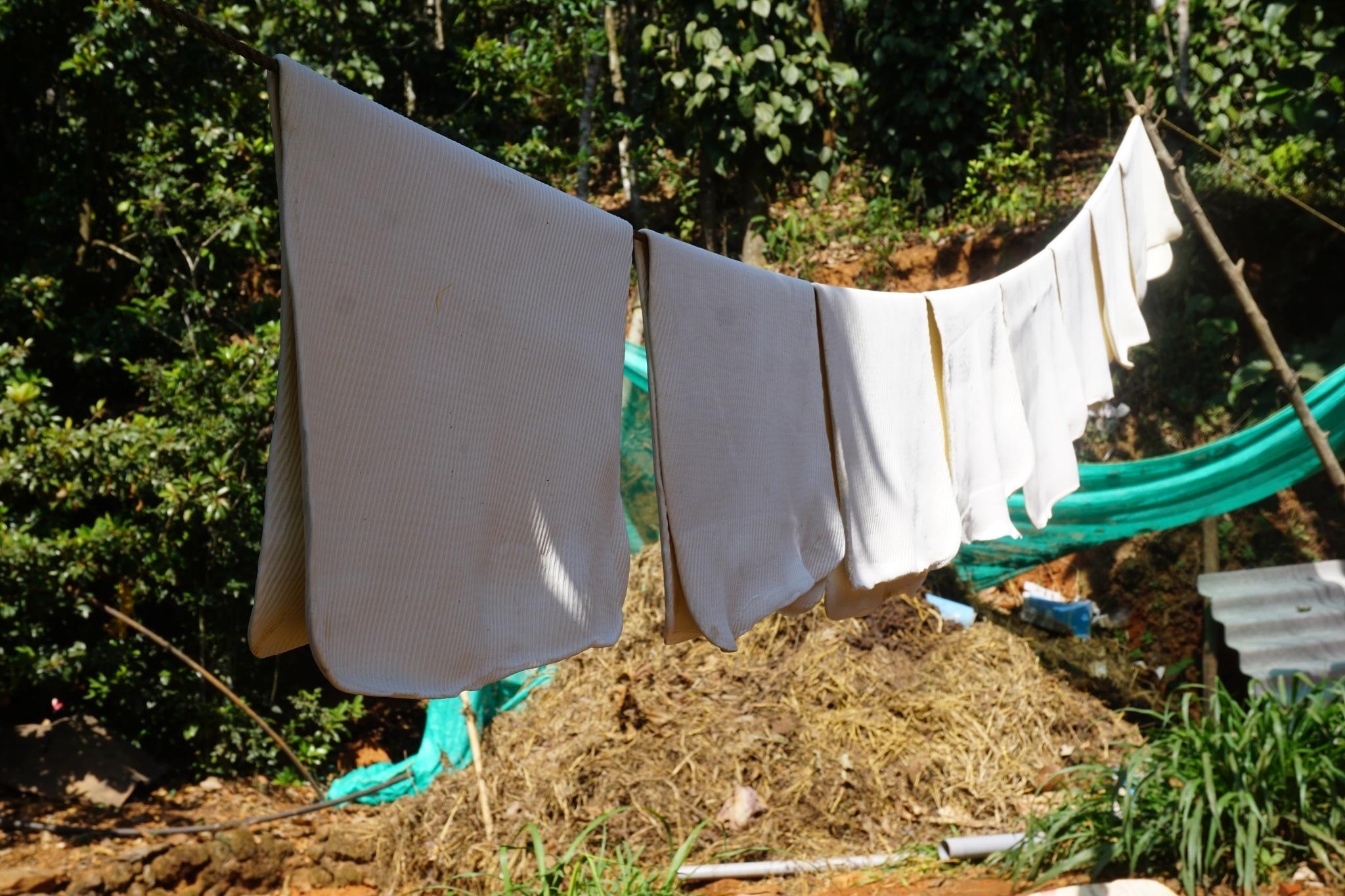 Photo in Rural #kerala #rubber #latex #vagam0nda