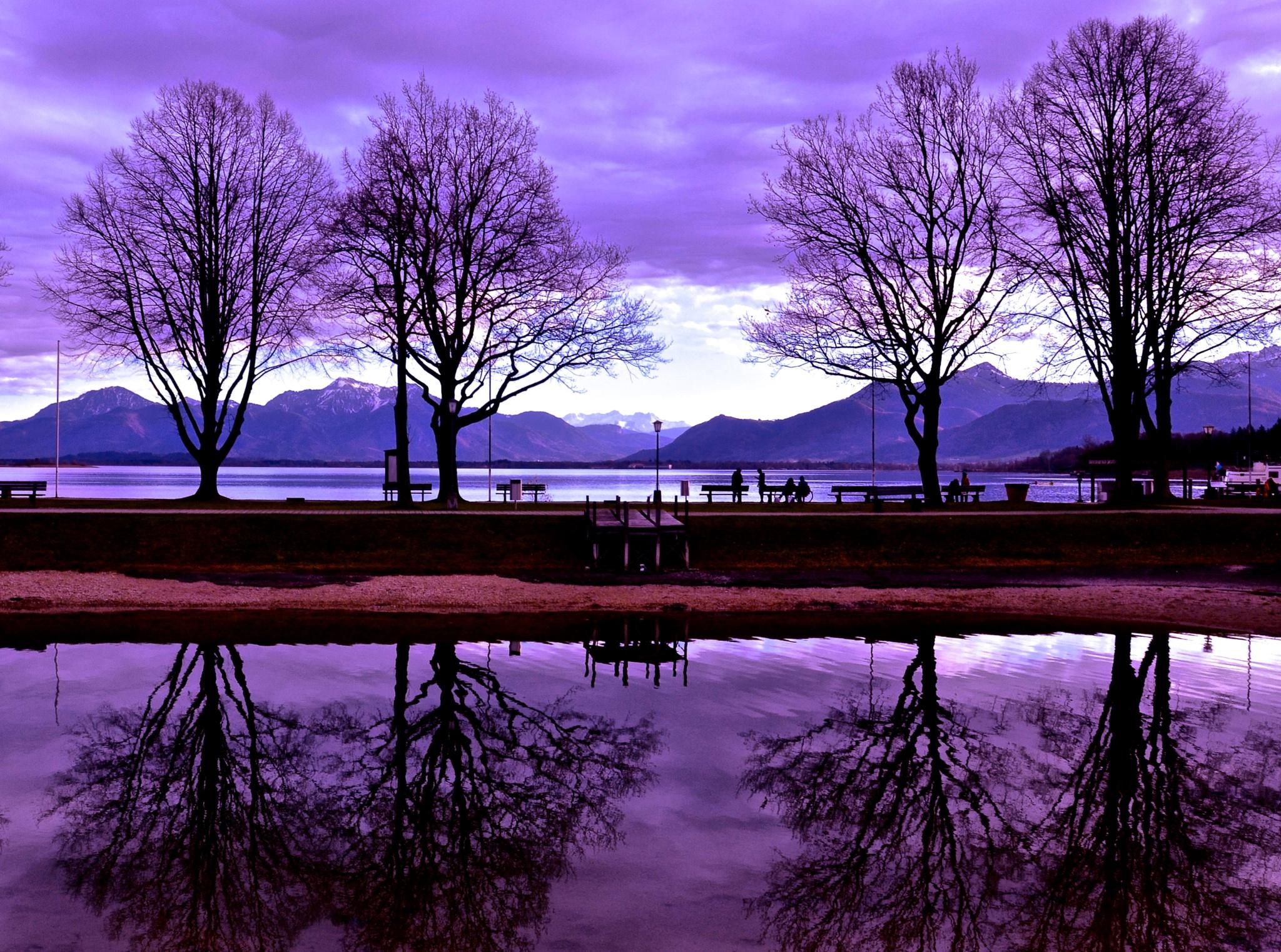 Purple Rain by justashadowfestival