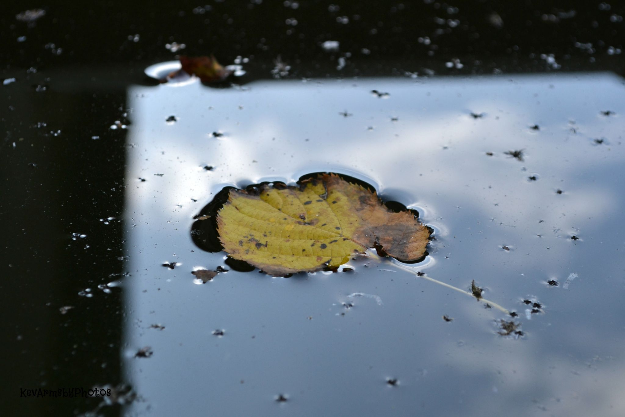 Surface tension by Charles
