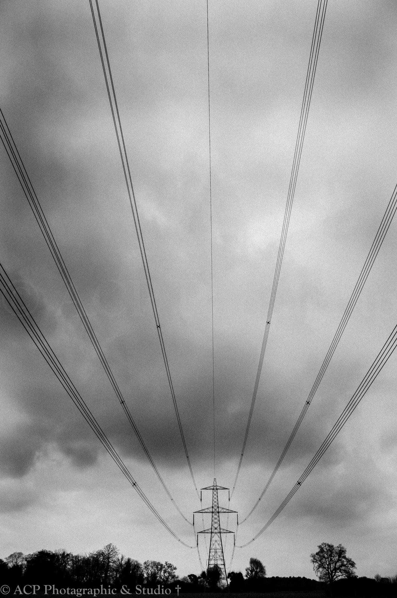 Wires by colin phillips