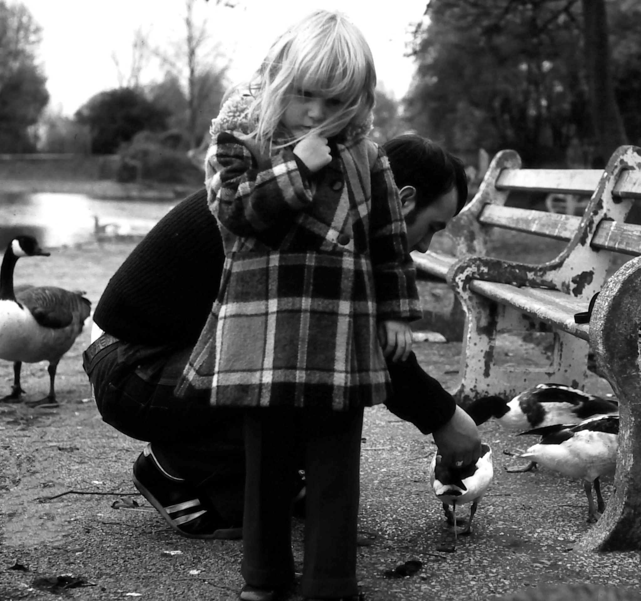 i wanted to feed the ducks  by cheryl.ferrarkirkham