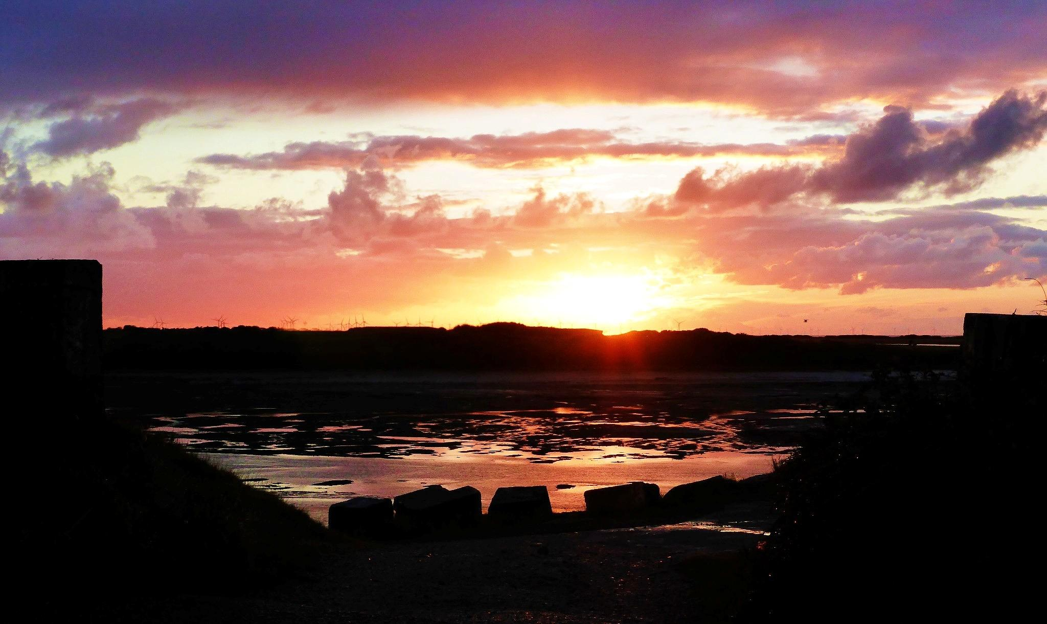 SUNSET by cheryl.ferrarkirkham