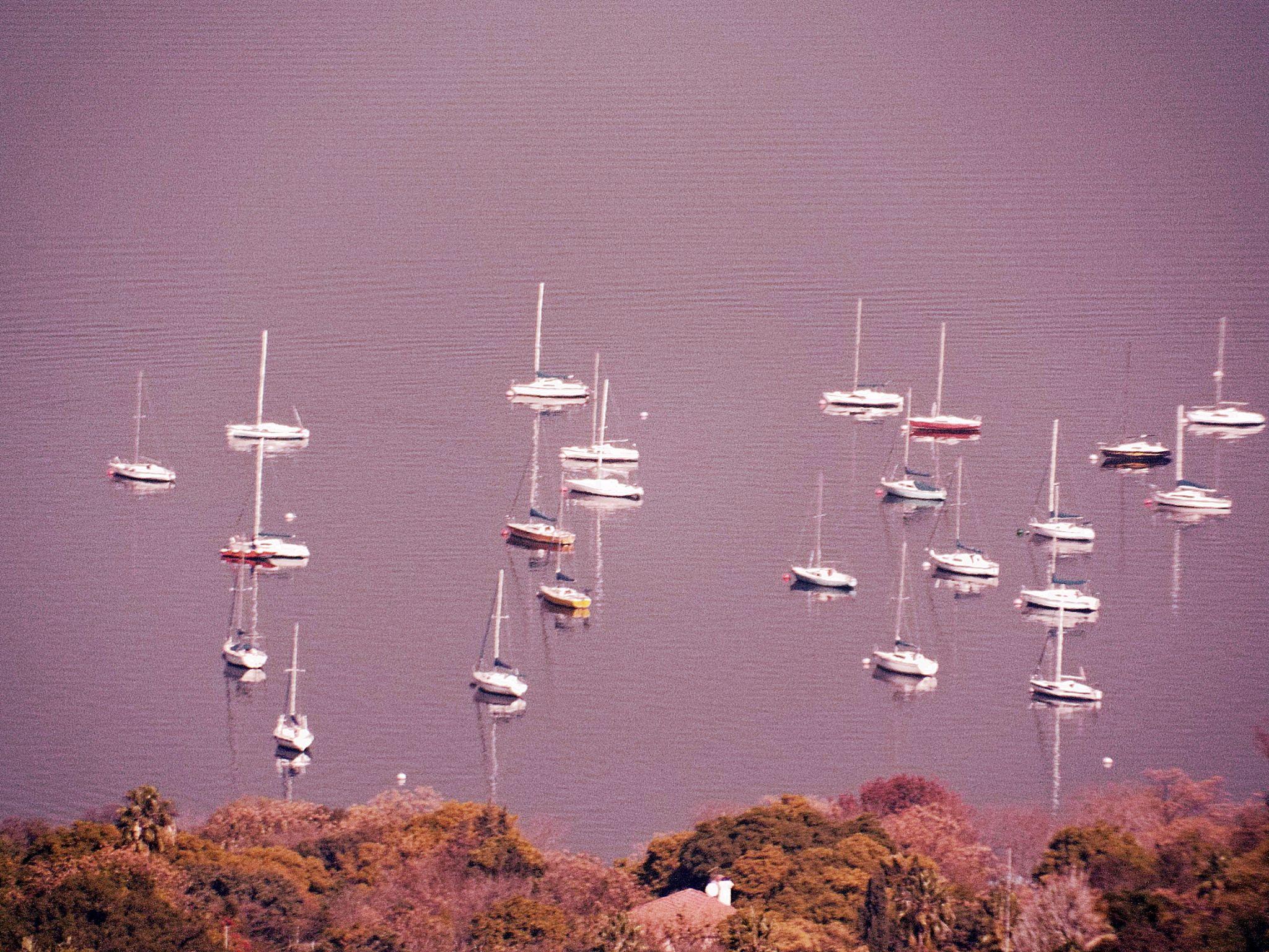 Boat by wynand.roelofse
