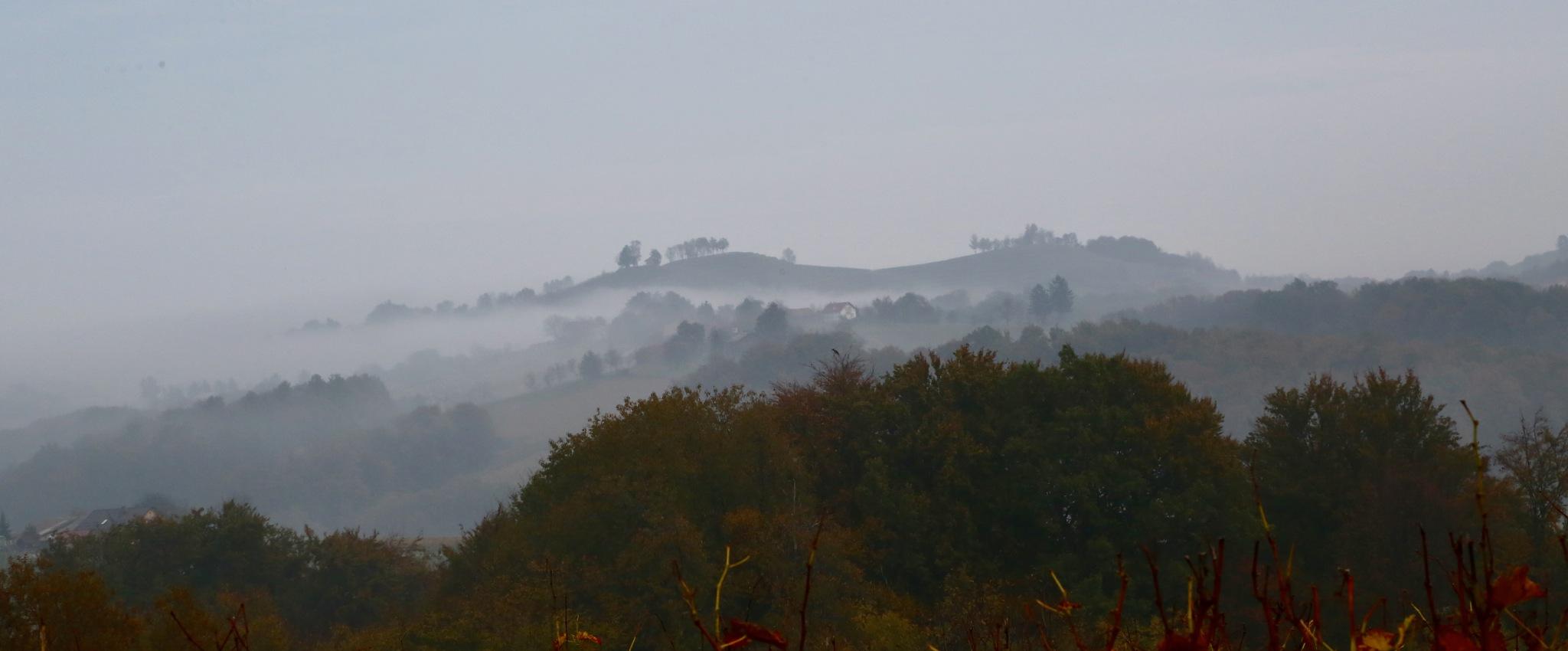 fog by meteor14avgust