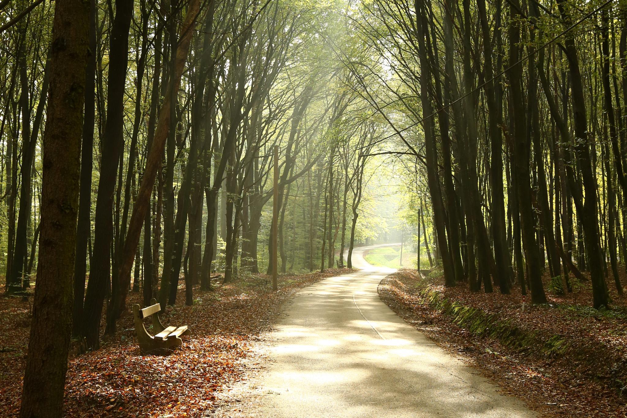 Photo in Landscape #28_10_2014