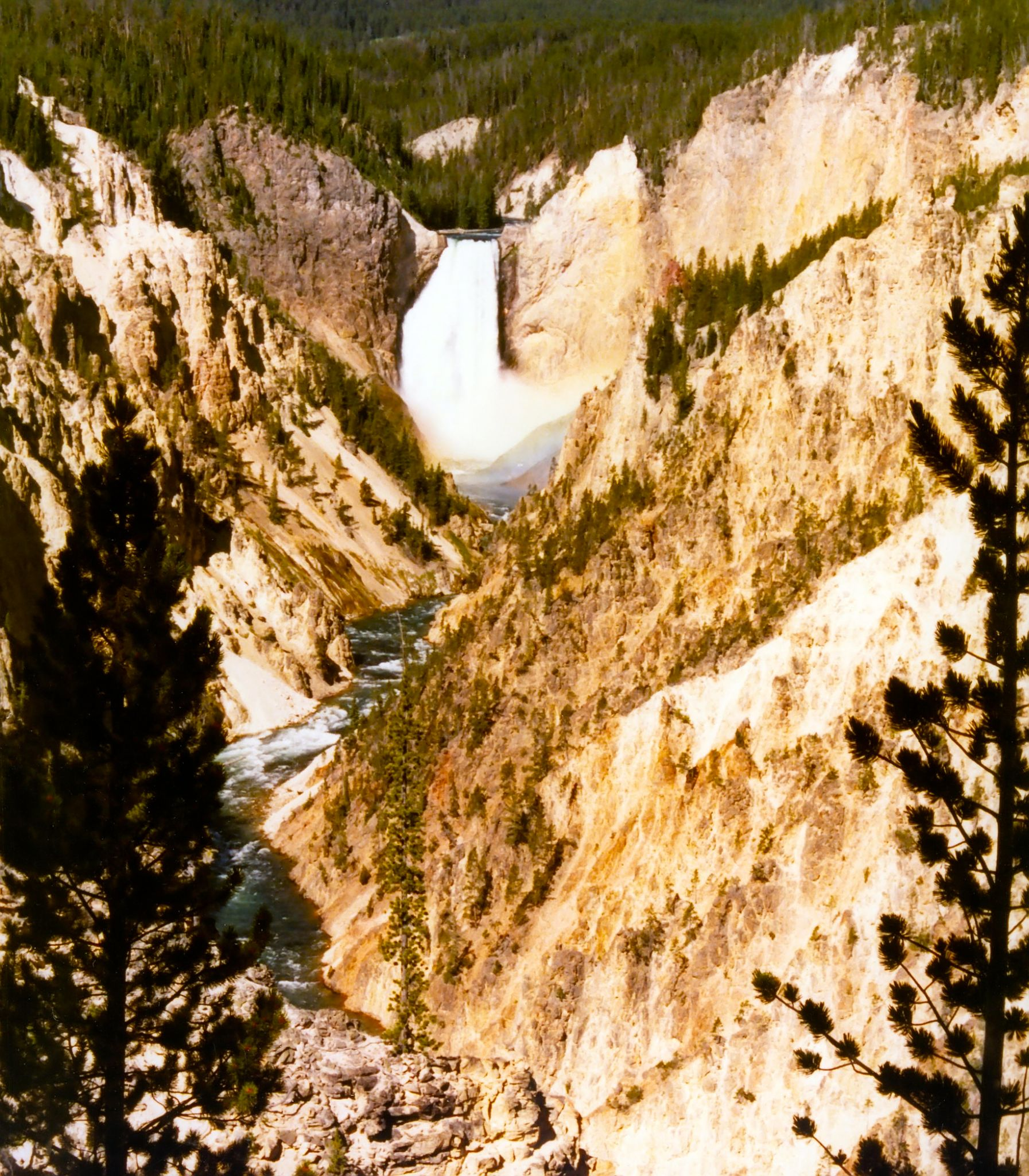 Lower Falls of the Yellowstone River by BadgerBob
