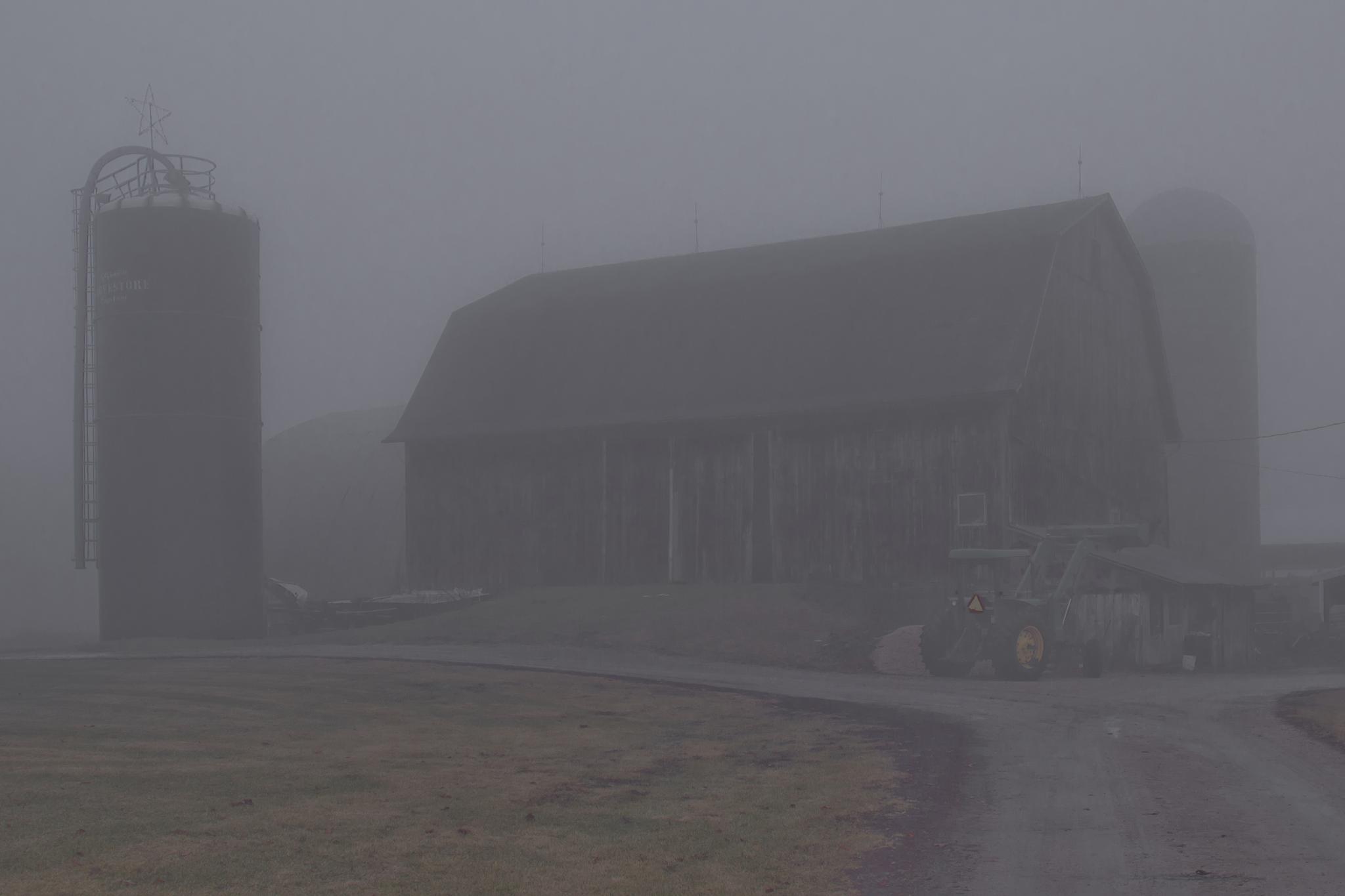 Foggy Farm by BadgerBob