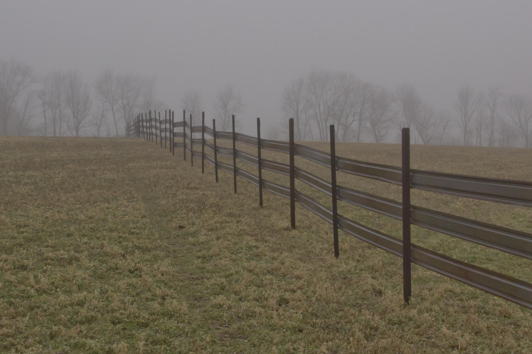 Snow Fence? by BadgerBob