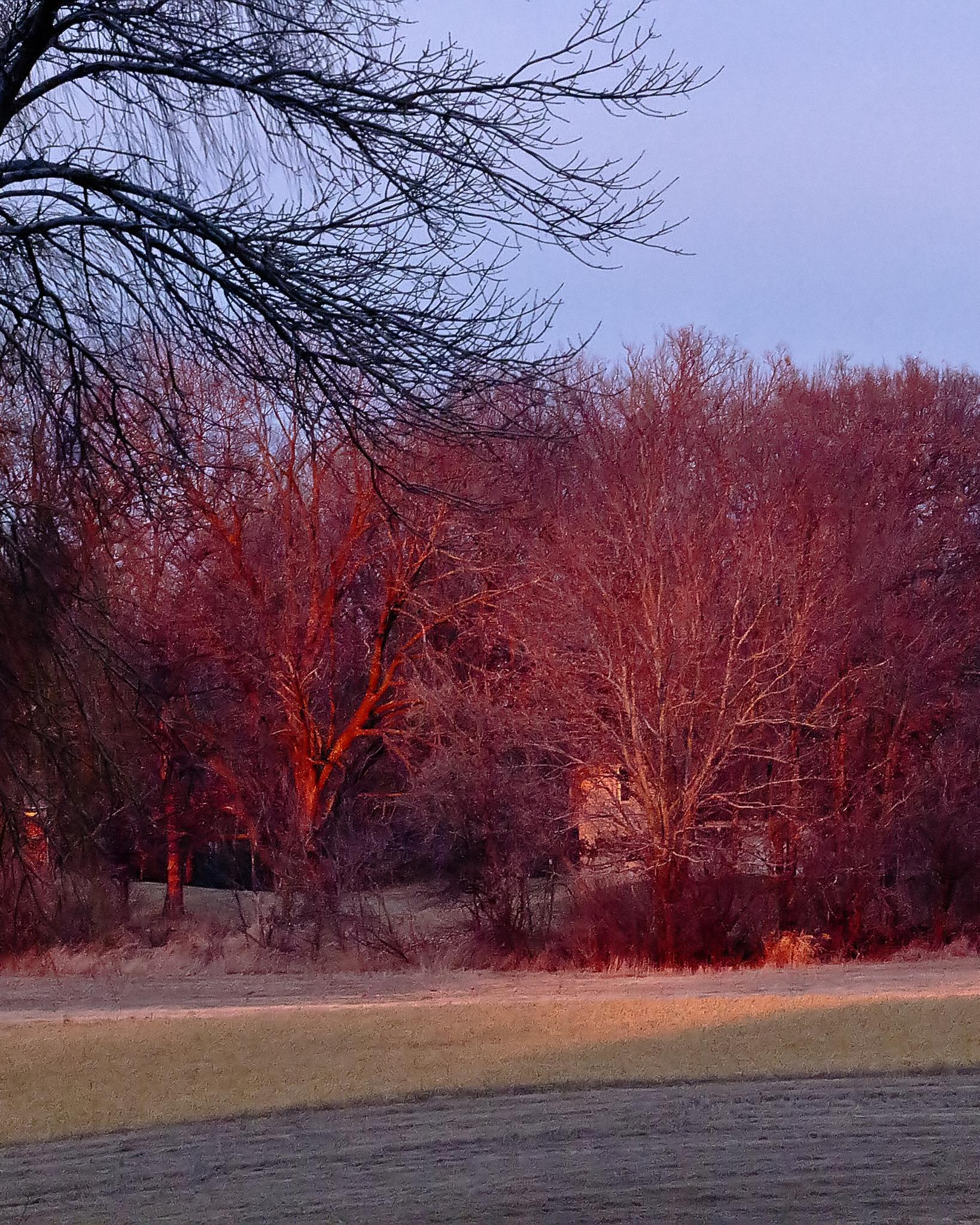 Blazing Sunset by BadgerBob