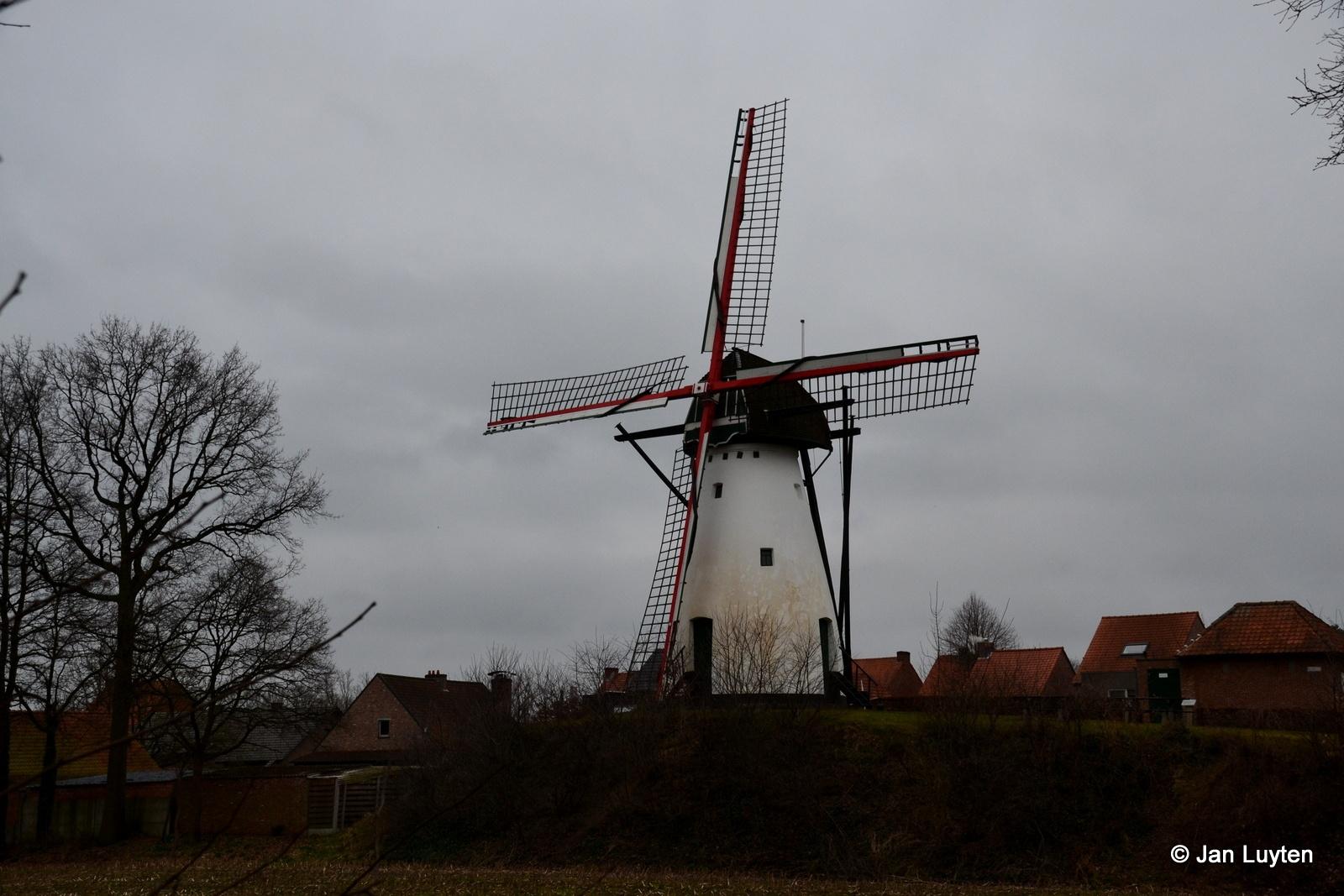 Molen Ezaart by Jan Luyten