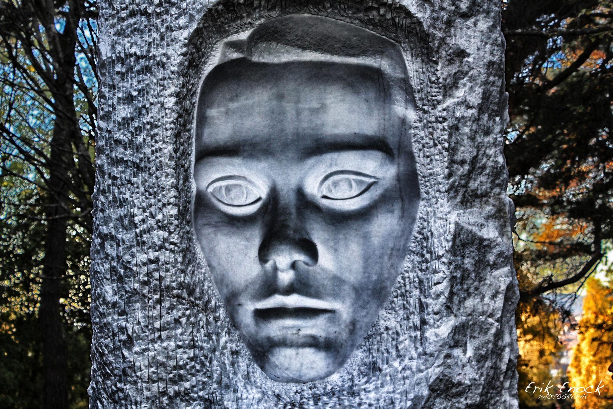 Face by Erik Enock