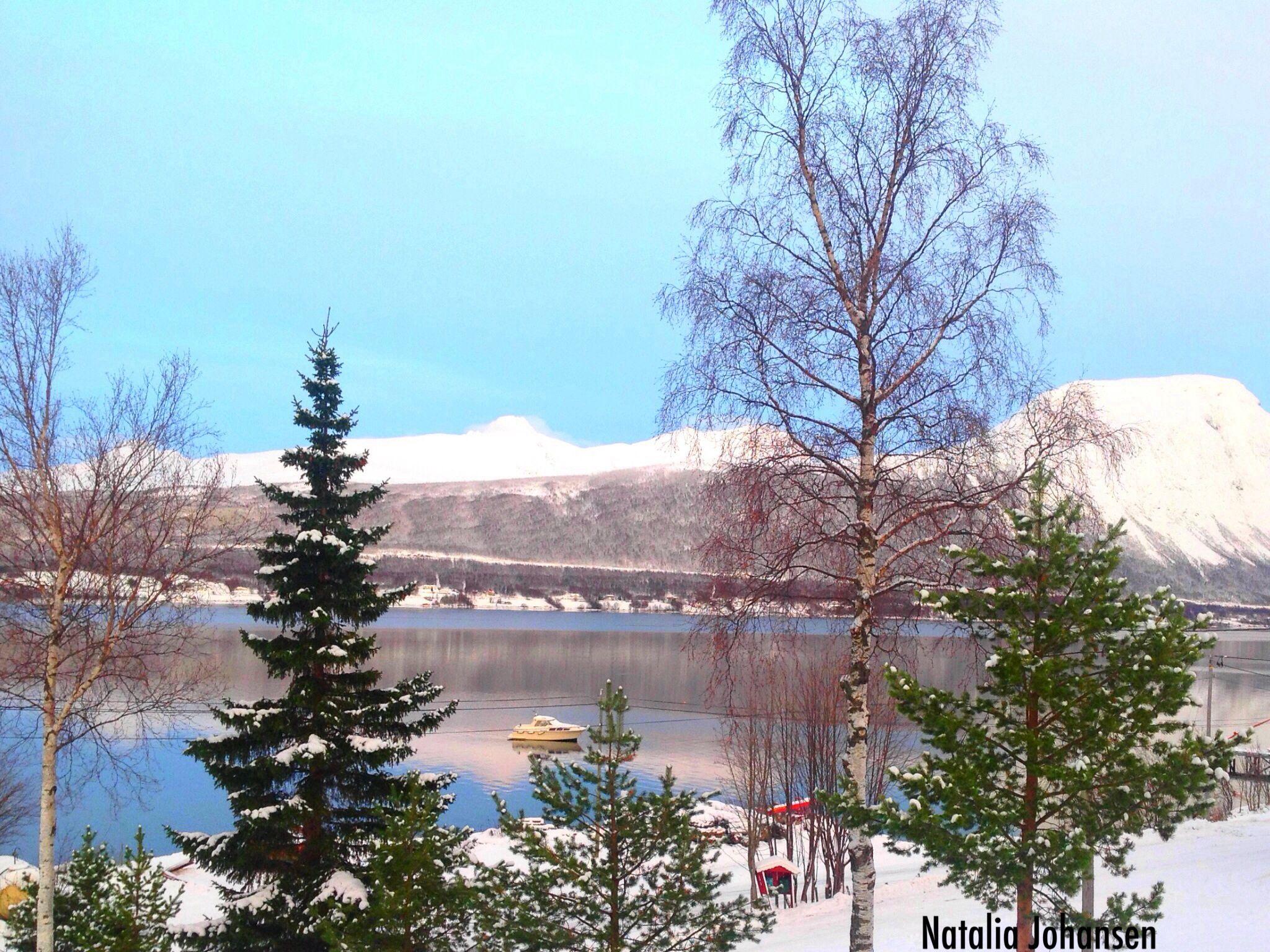 Winter by natalia.johansen.92