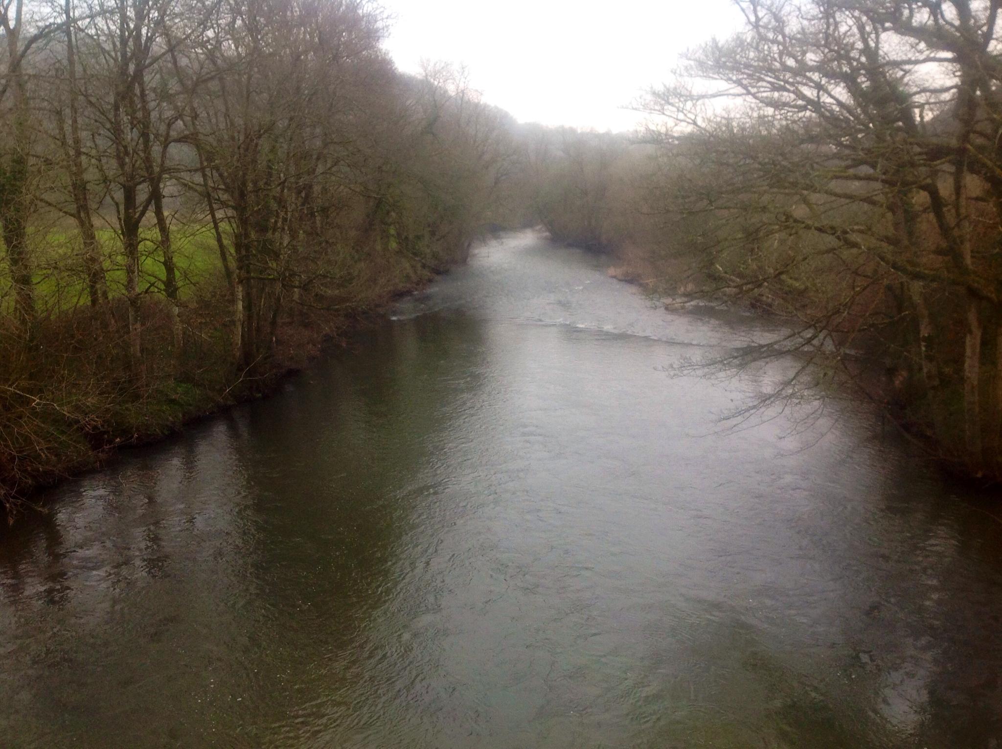River by ksoar1