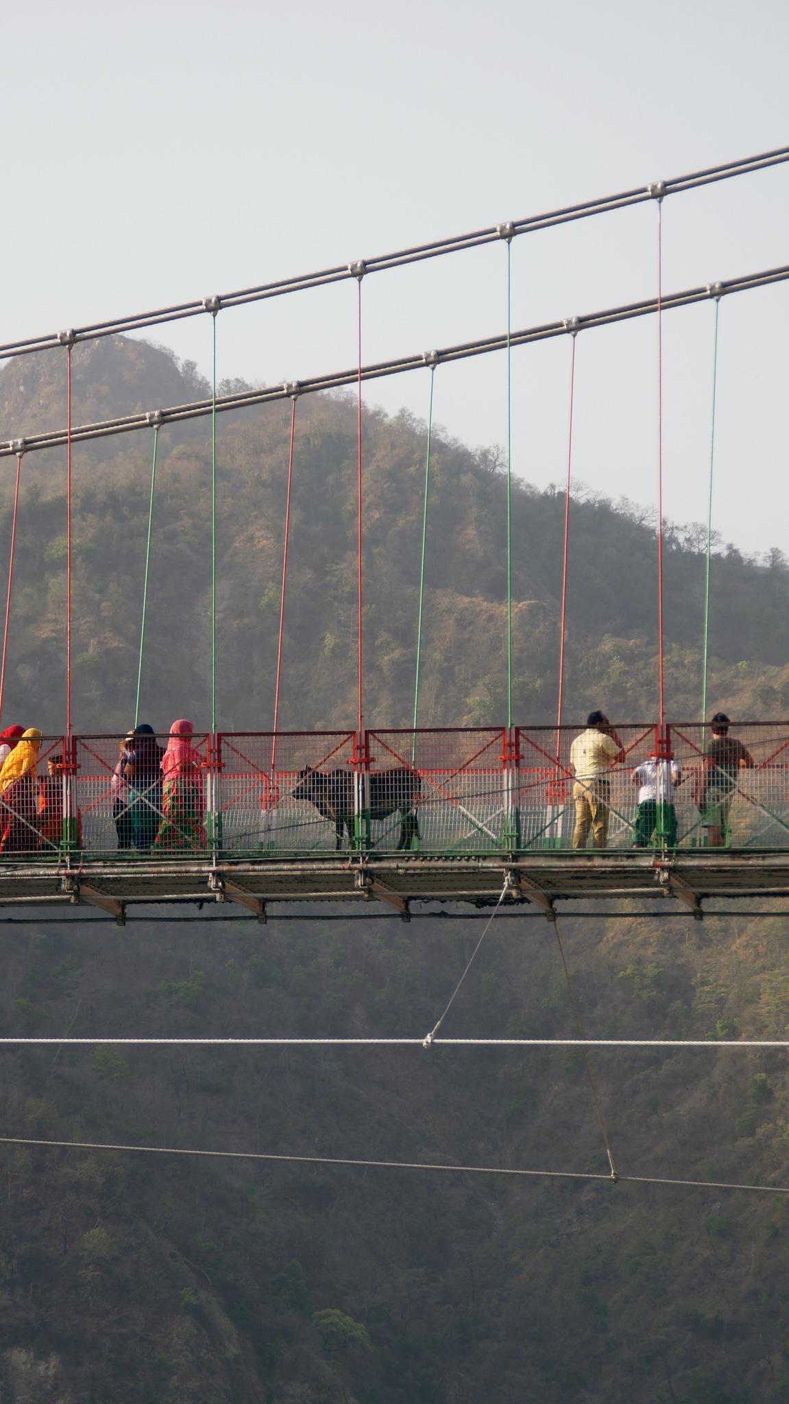 Laxman Jhula Bridge, Rishikesh, India 2017 by lars.erlandsson.9