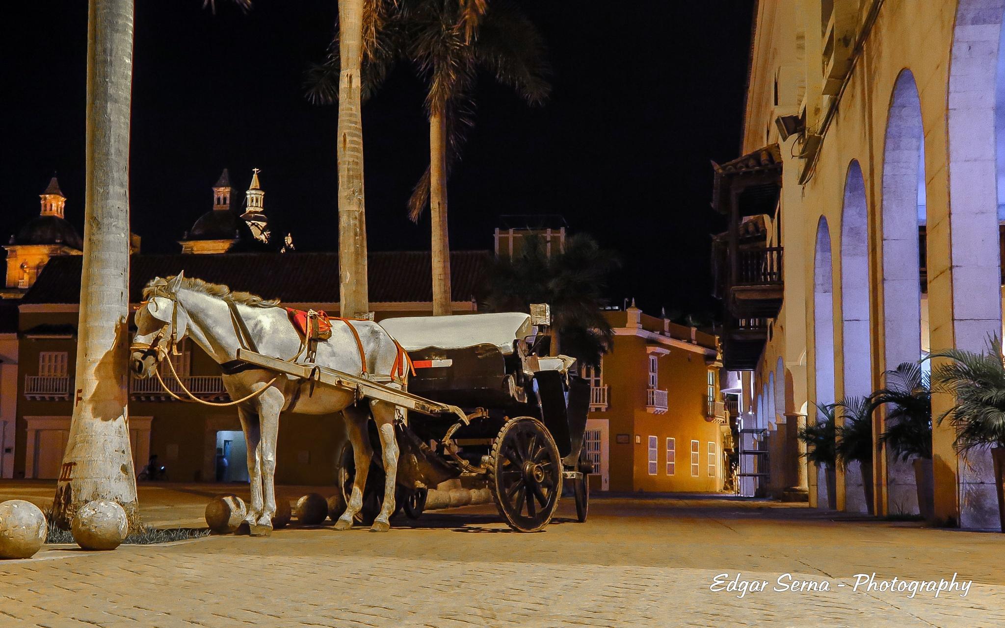 Carriage at night by Edgar Serna
