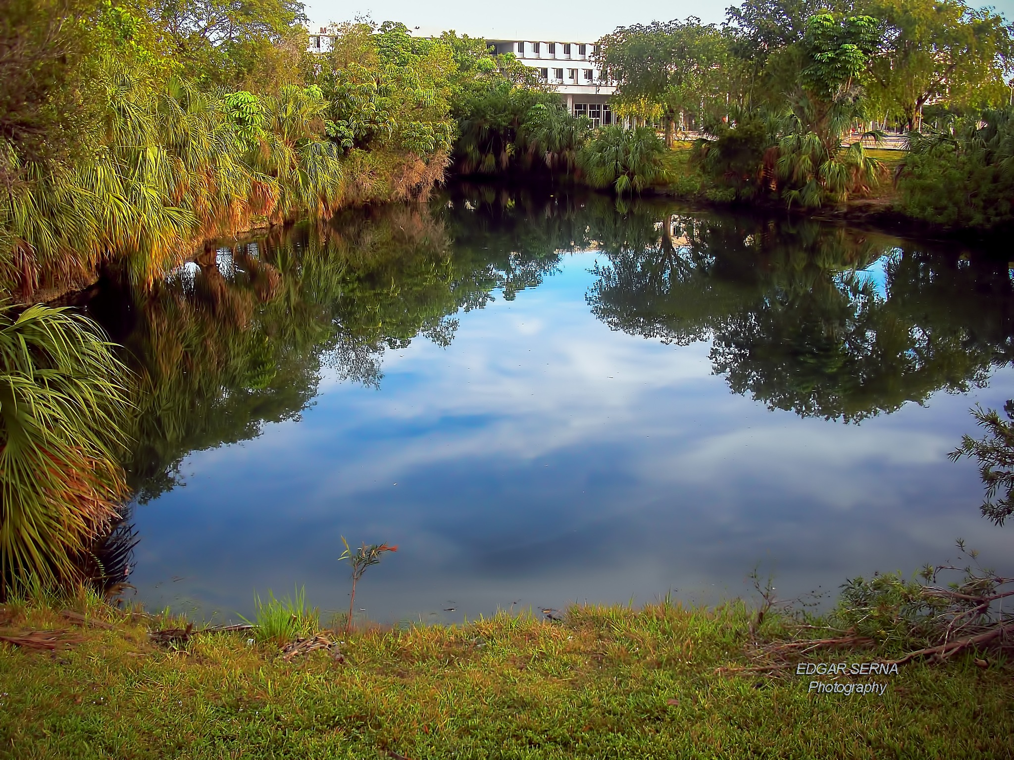 Little lake in the campus by Edgar Serna