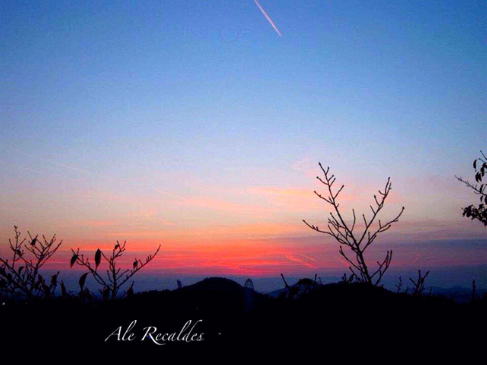 IMG_4957 by ale.recaldes