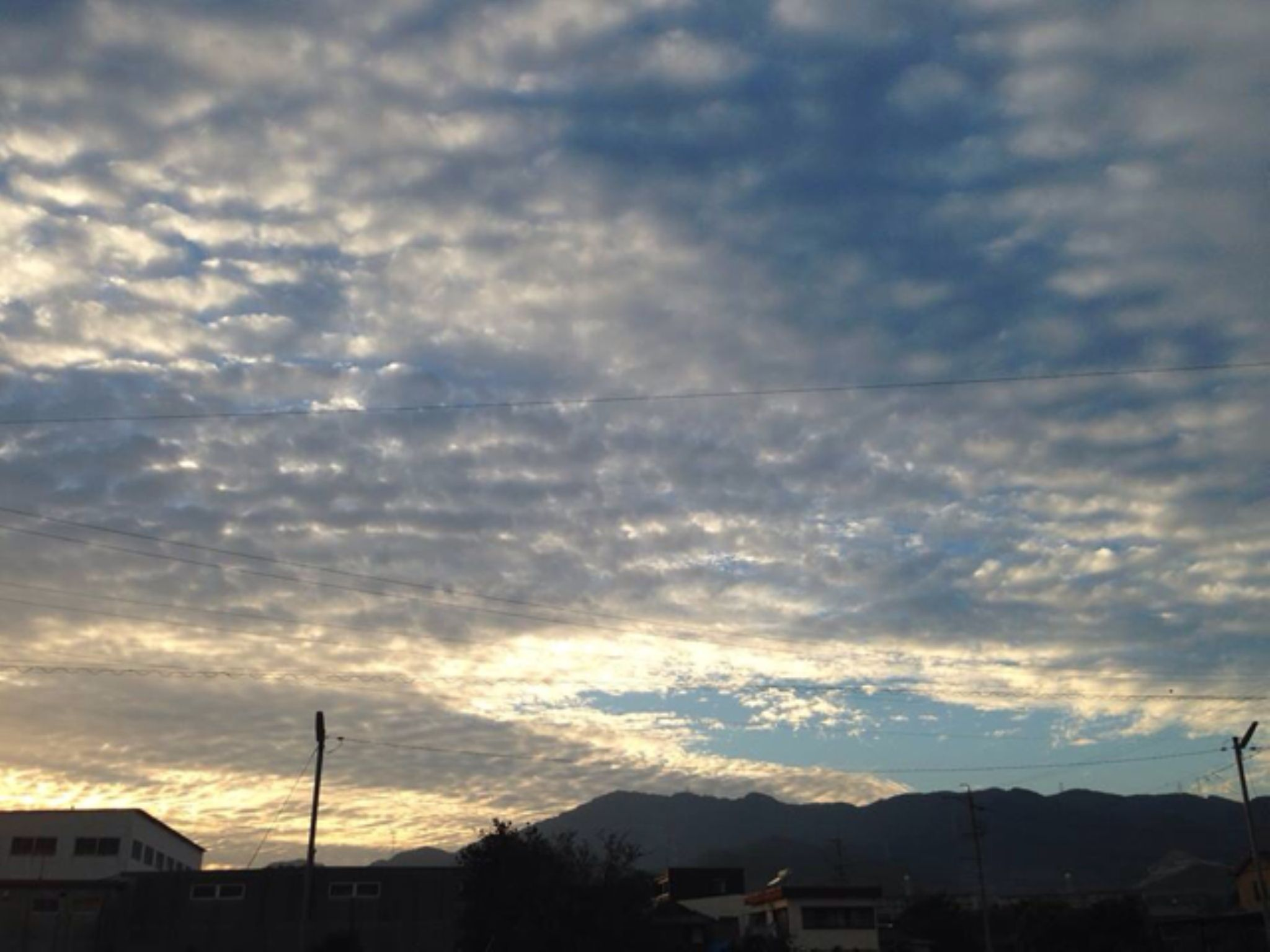 IMG_5482 by ale.recaldes