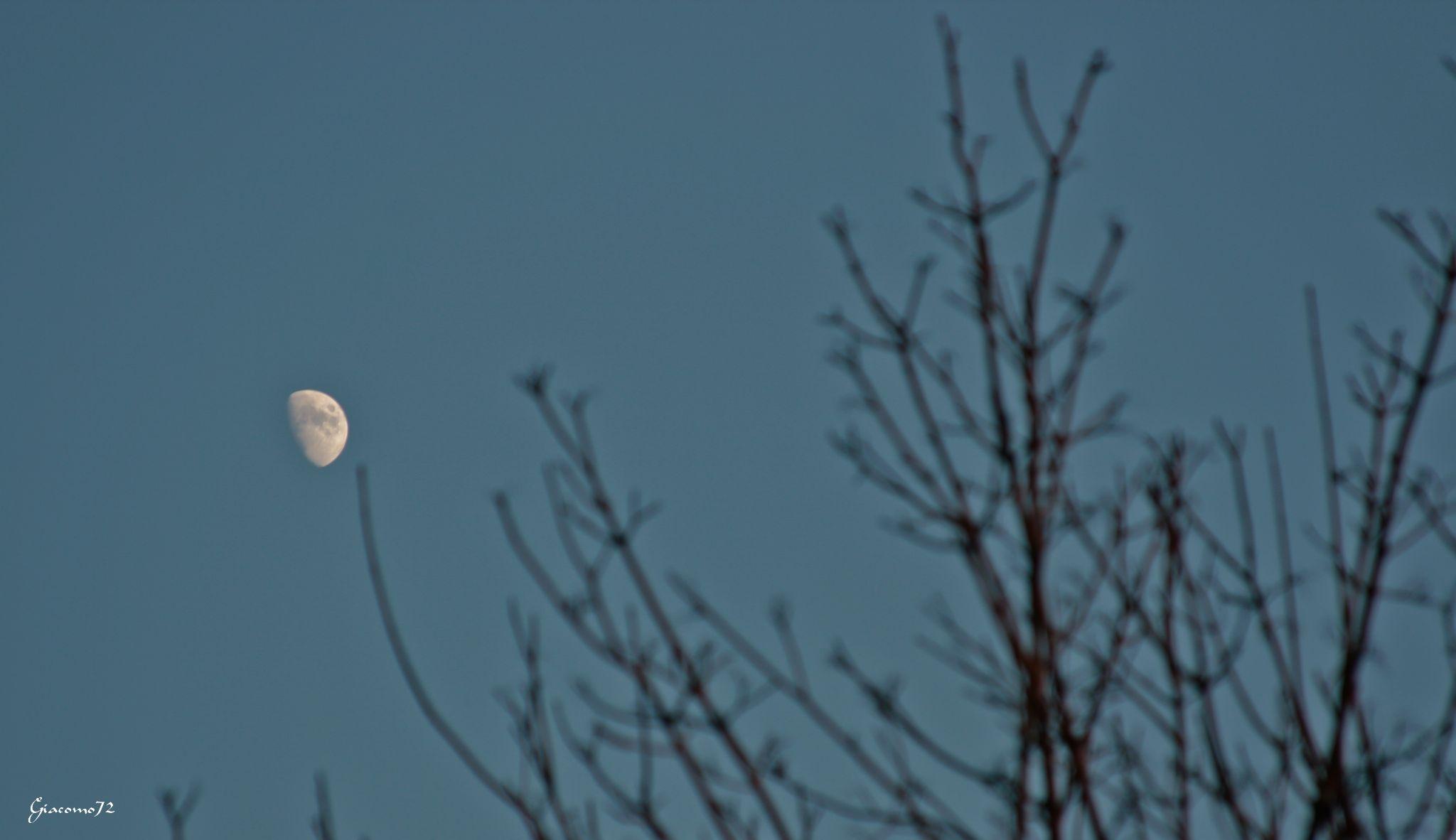 la luna by Giacomo72