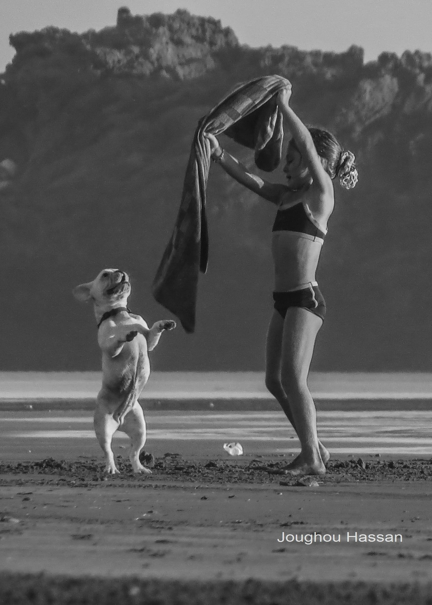 let the dog dance  by Joughou