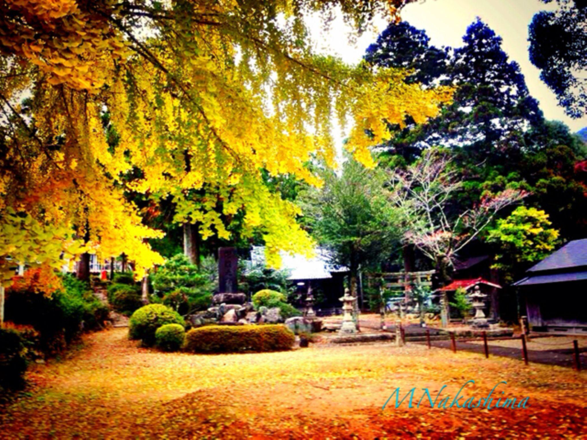 IMG_4348 by marina.nakashima