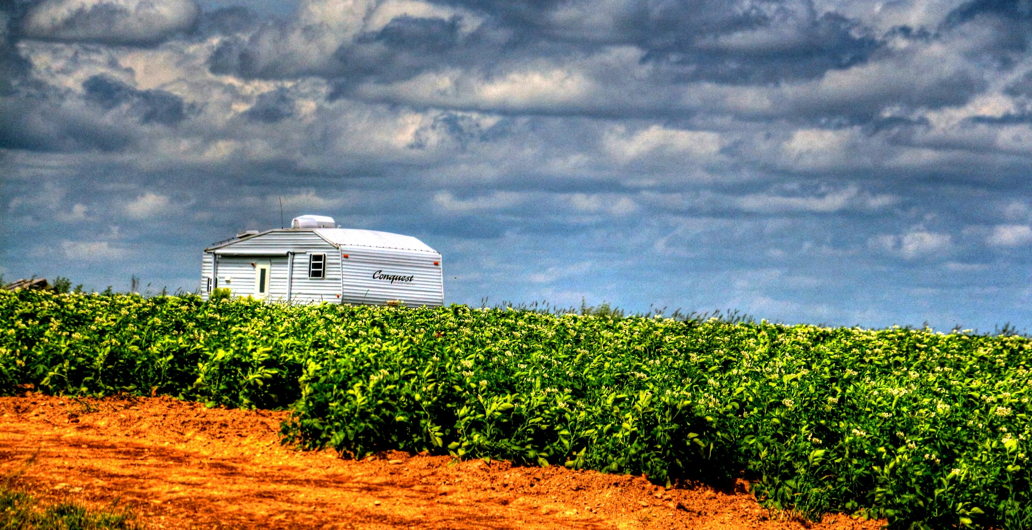 Camping in the potatoe field.. by chefbro53
