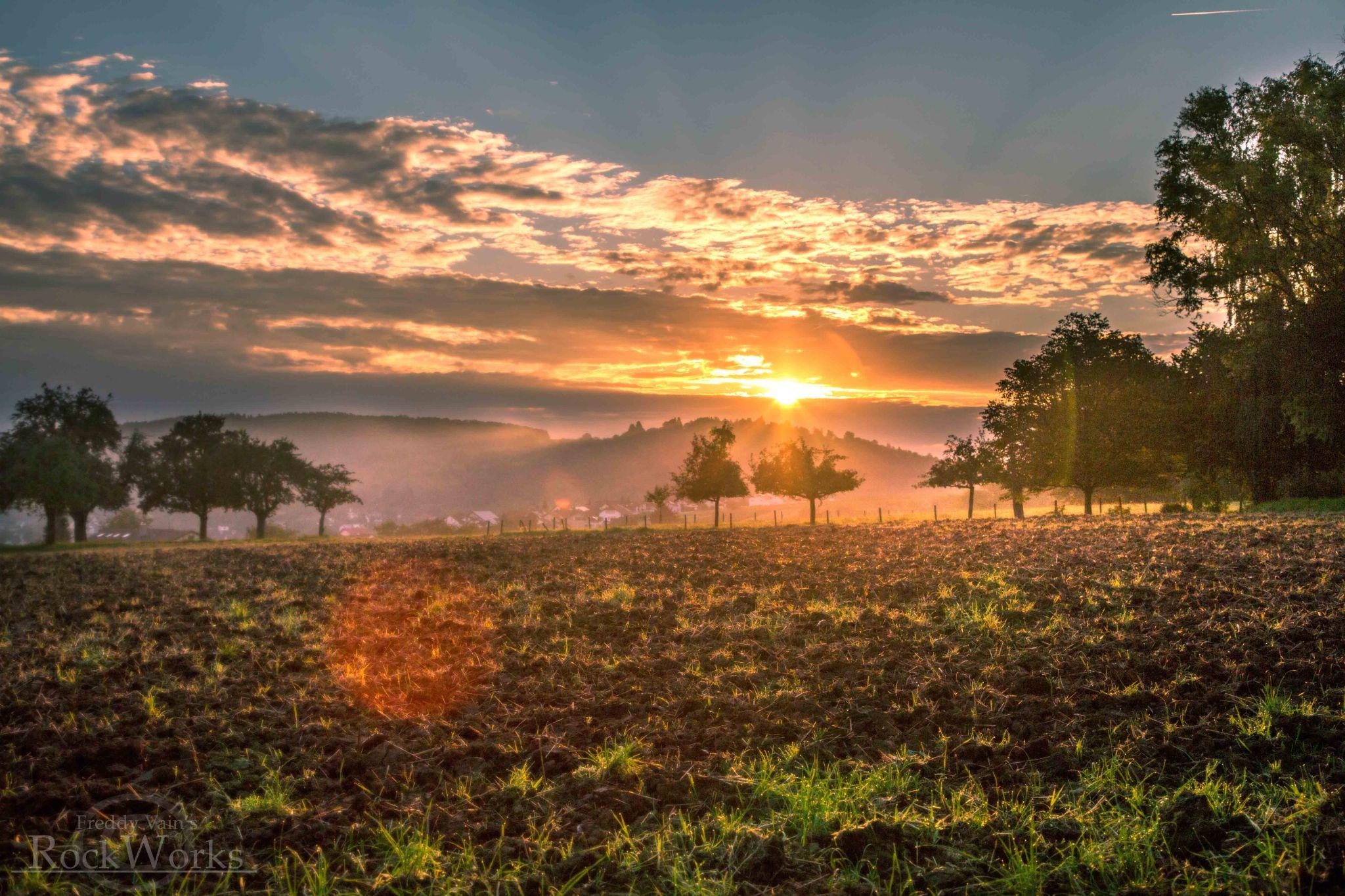 German Sun by Fredrik Sindsen (FJS Photography)