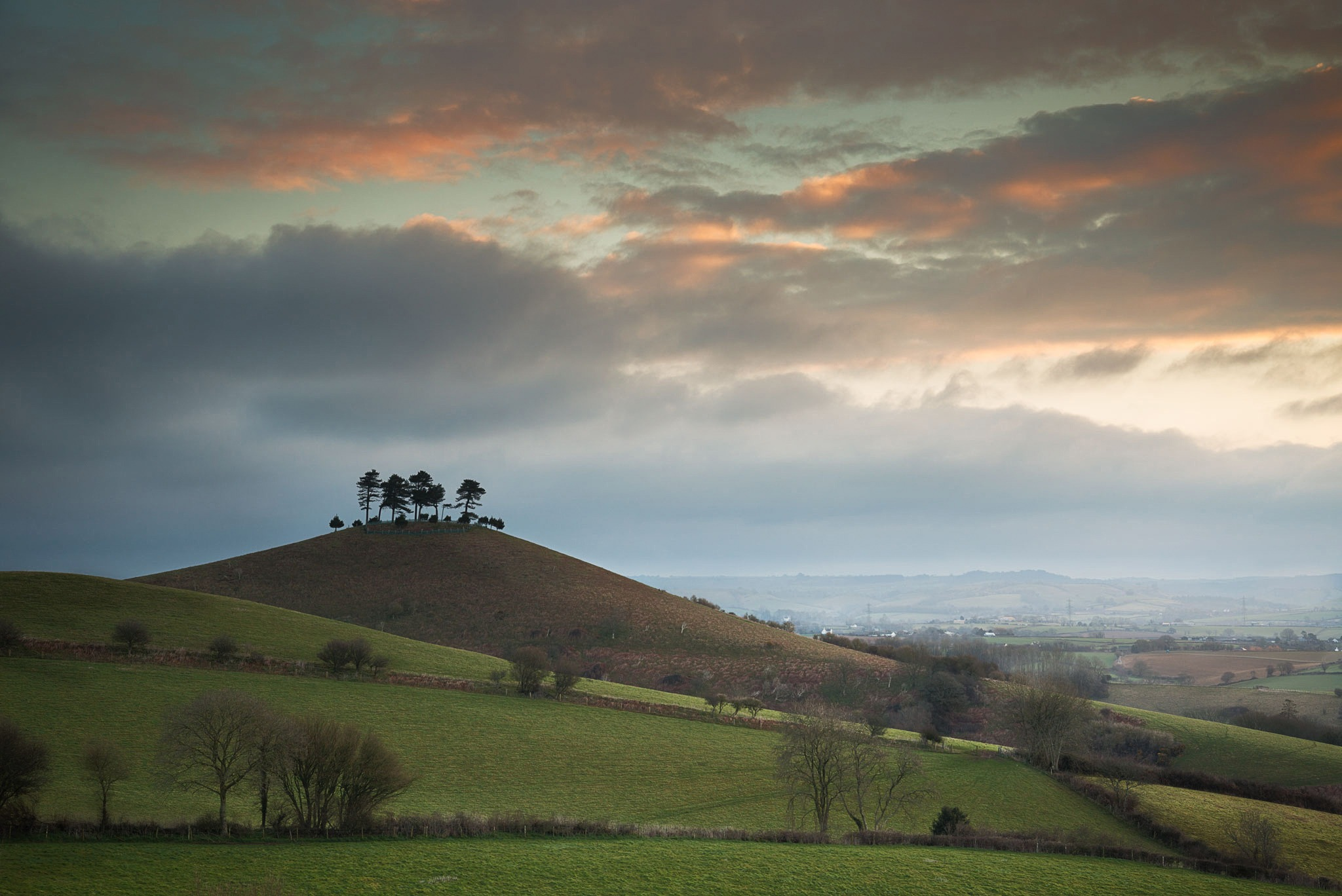 Colmers Hill by mgj
