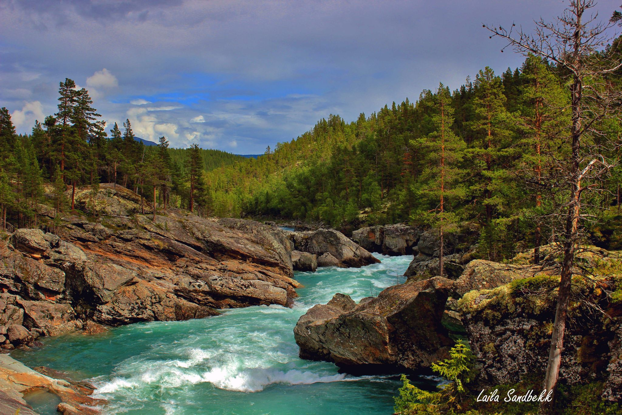 Powerful nature by laila.sandbekk