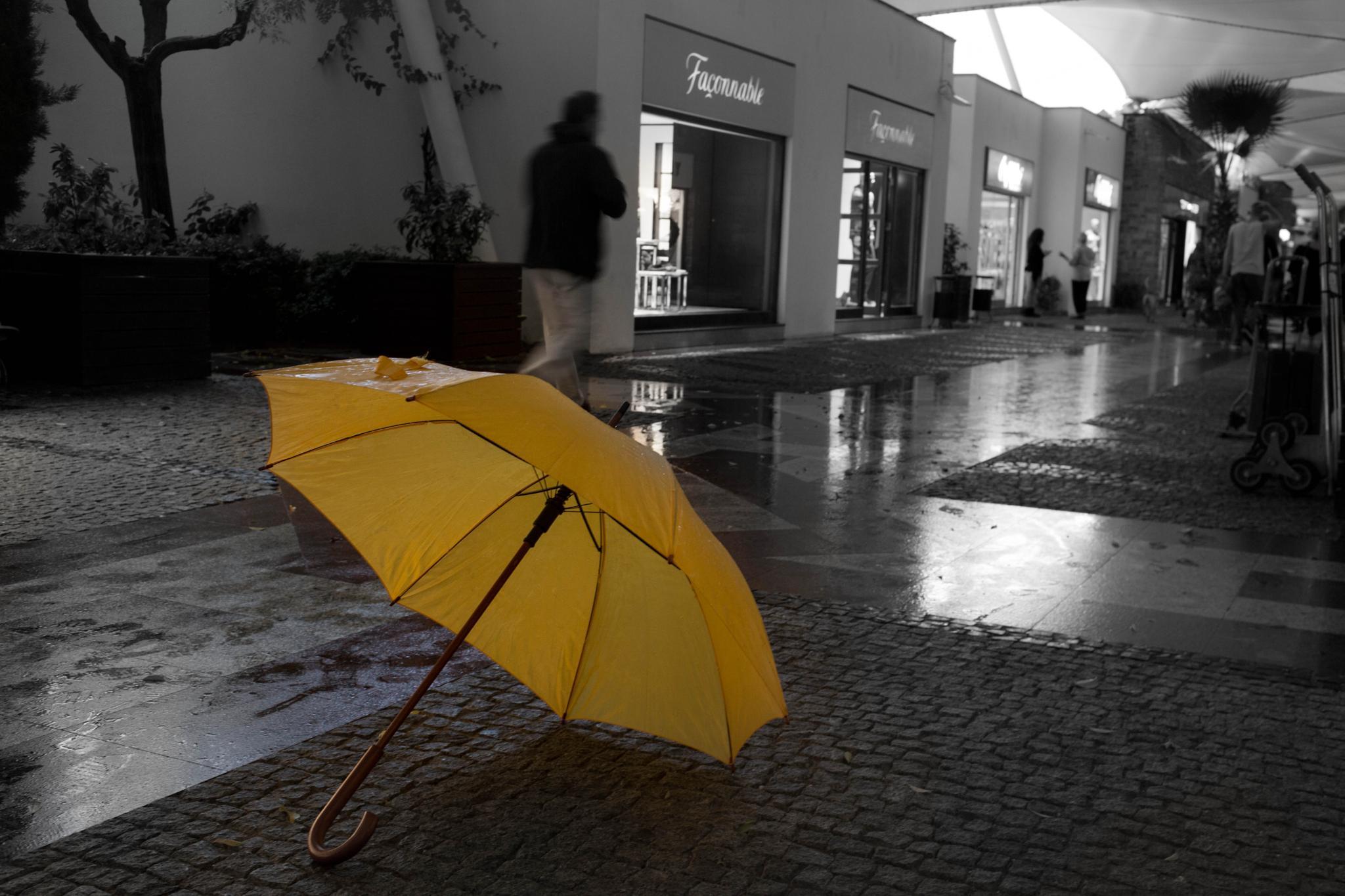 the Yellow Umbrella by Can Berkol