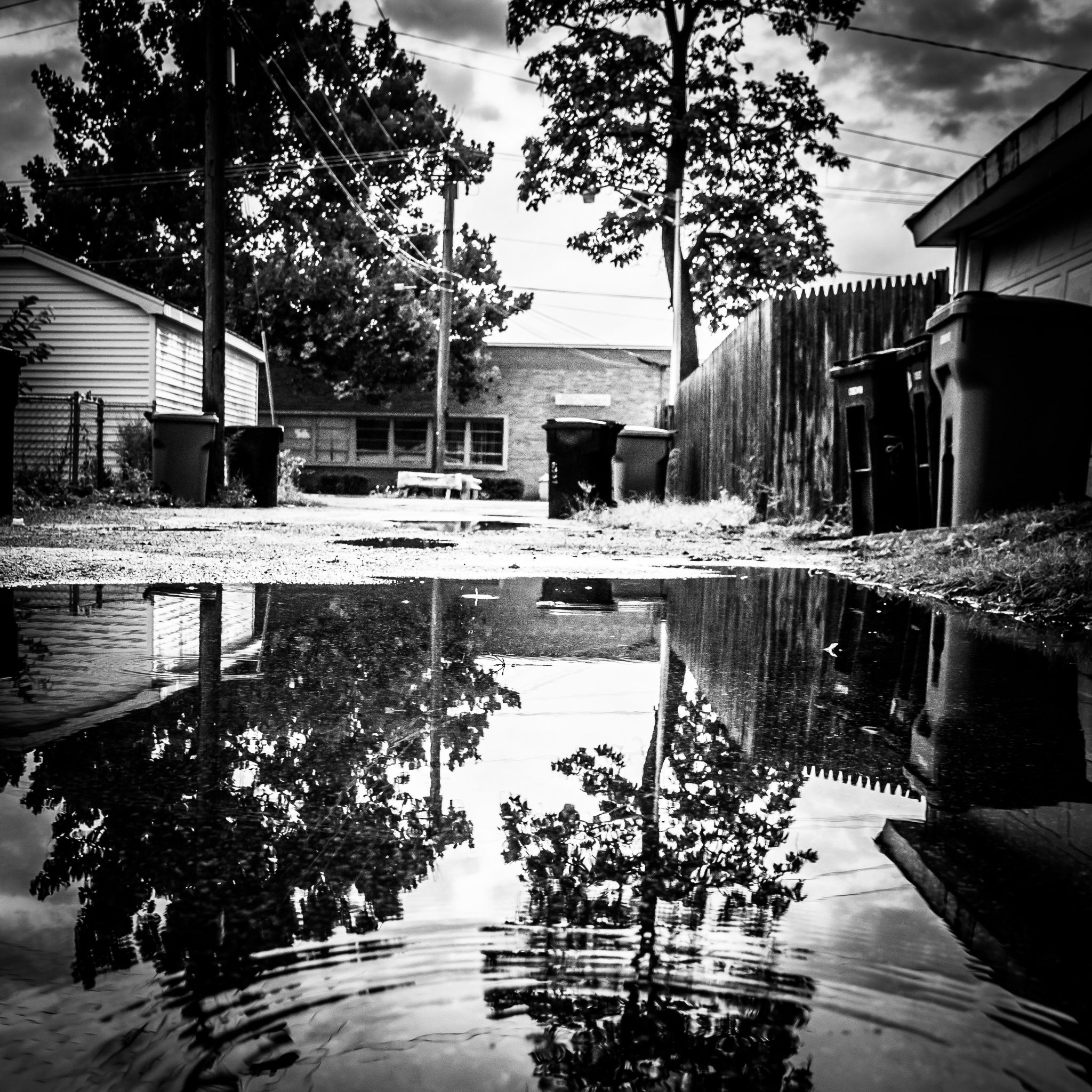 Alleyway Reflections by Andie