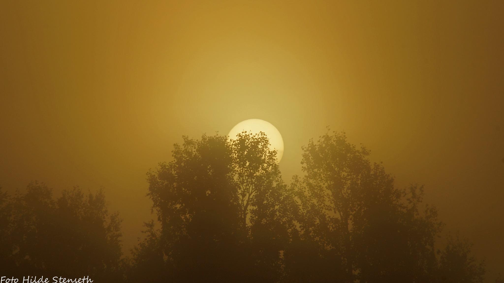 Sunrise! by hilde.stenseth.7