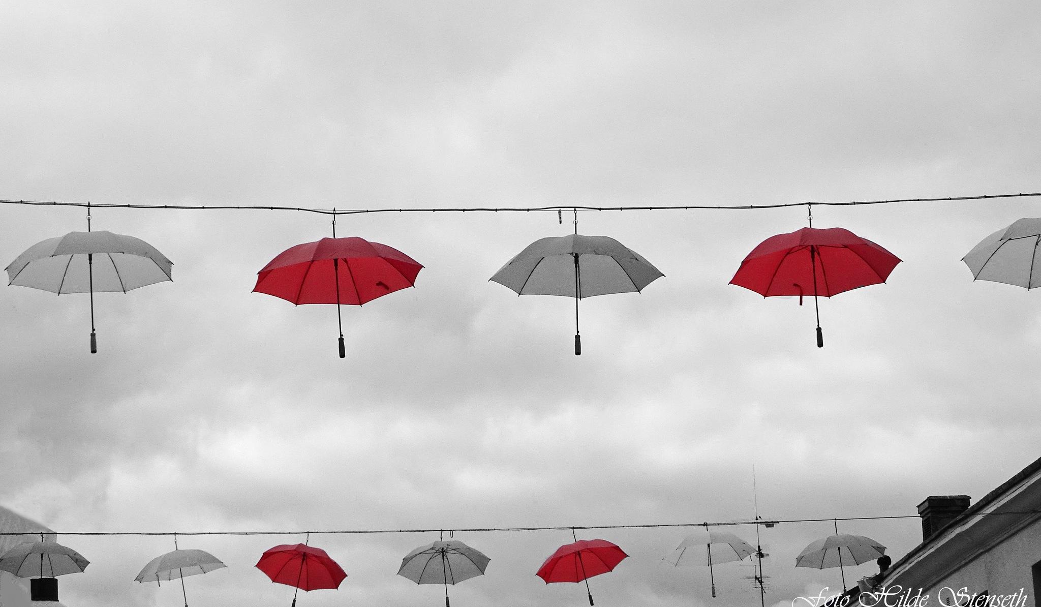 Umbrellas! by hilde.stenseth.7