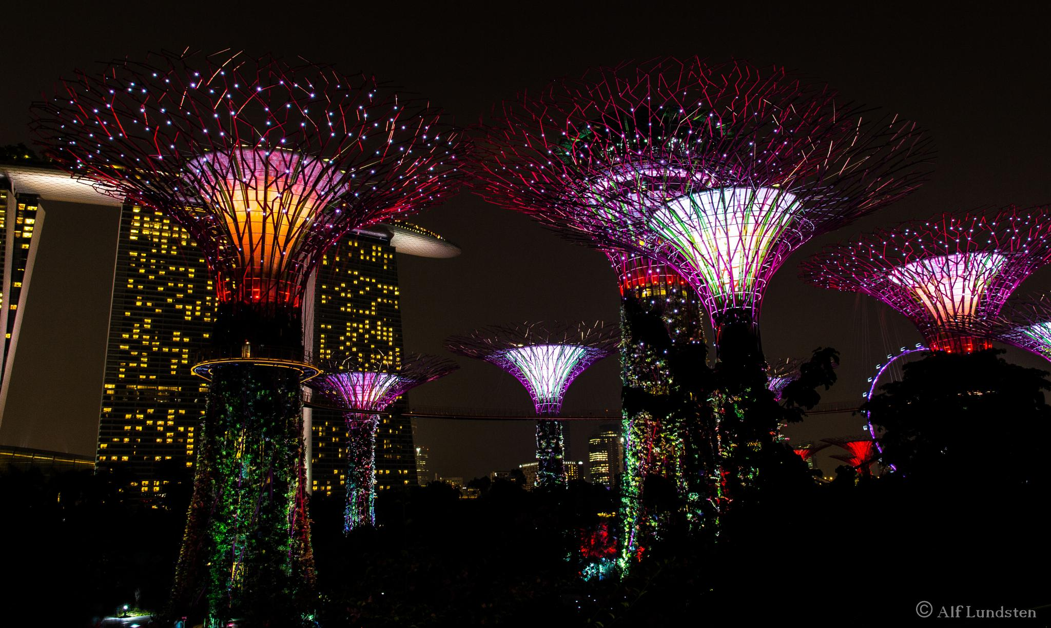 SuperSingapore by alf lundsten