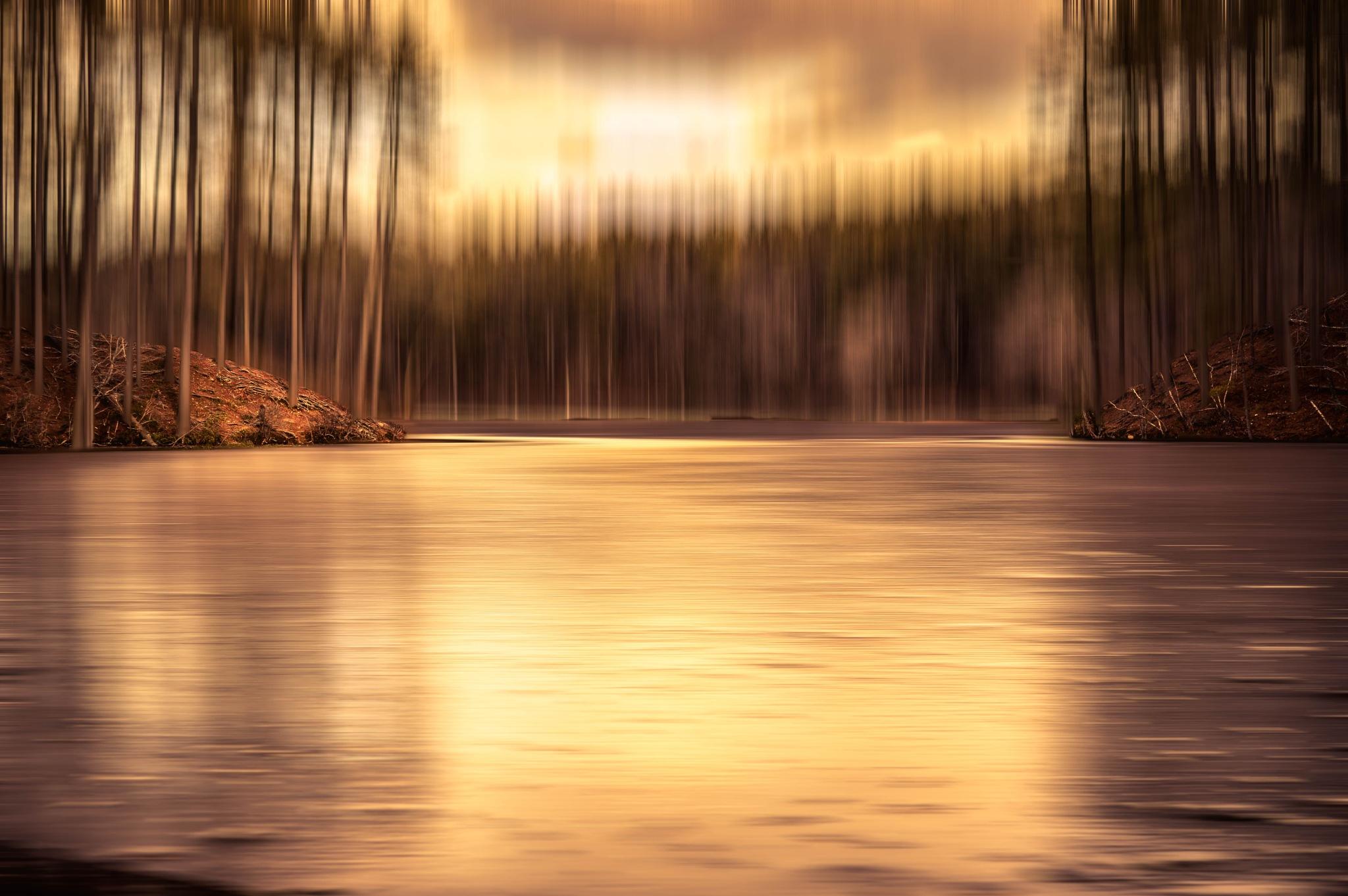 Frozen dusk by sue_duq
