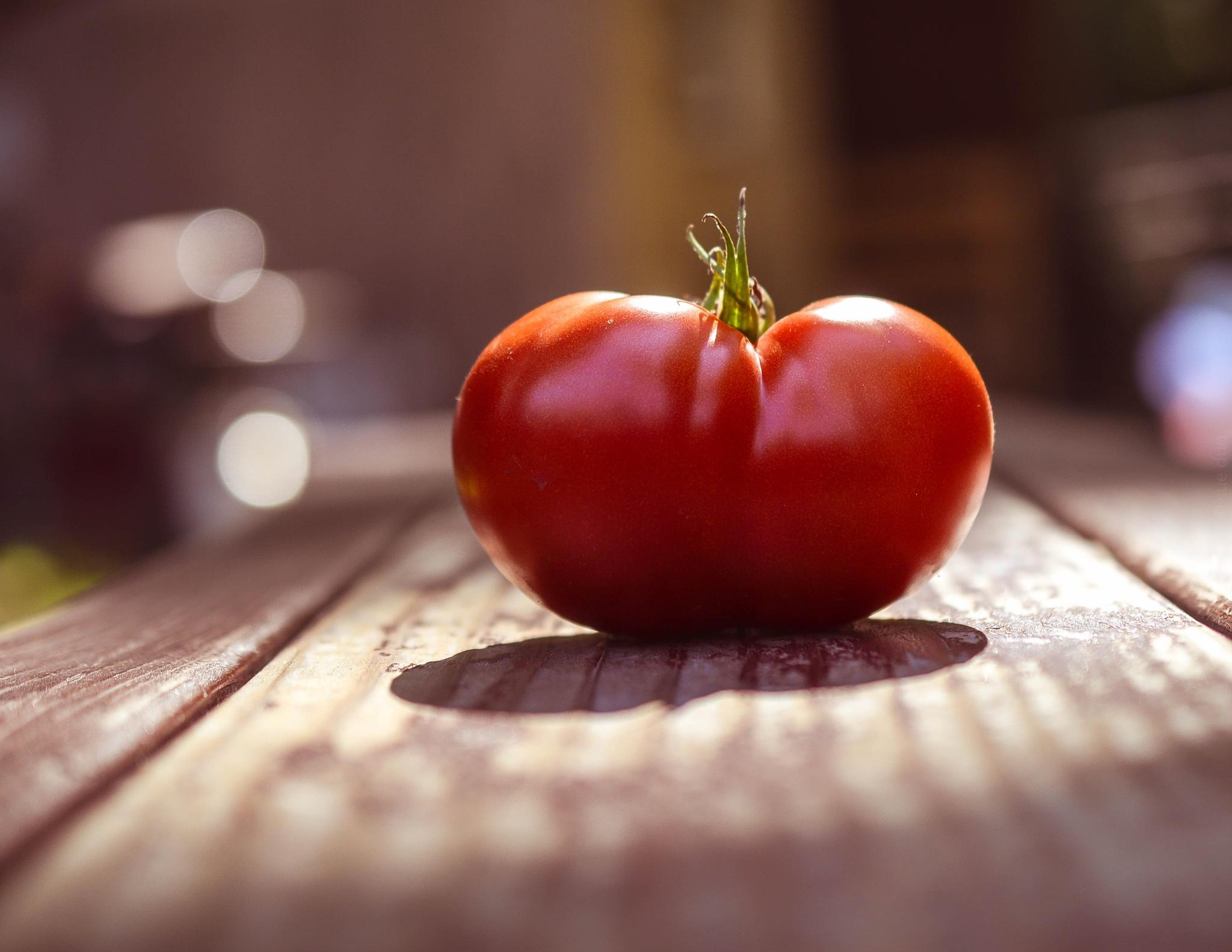 Tomato by sue_duq