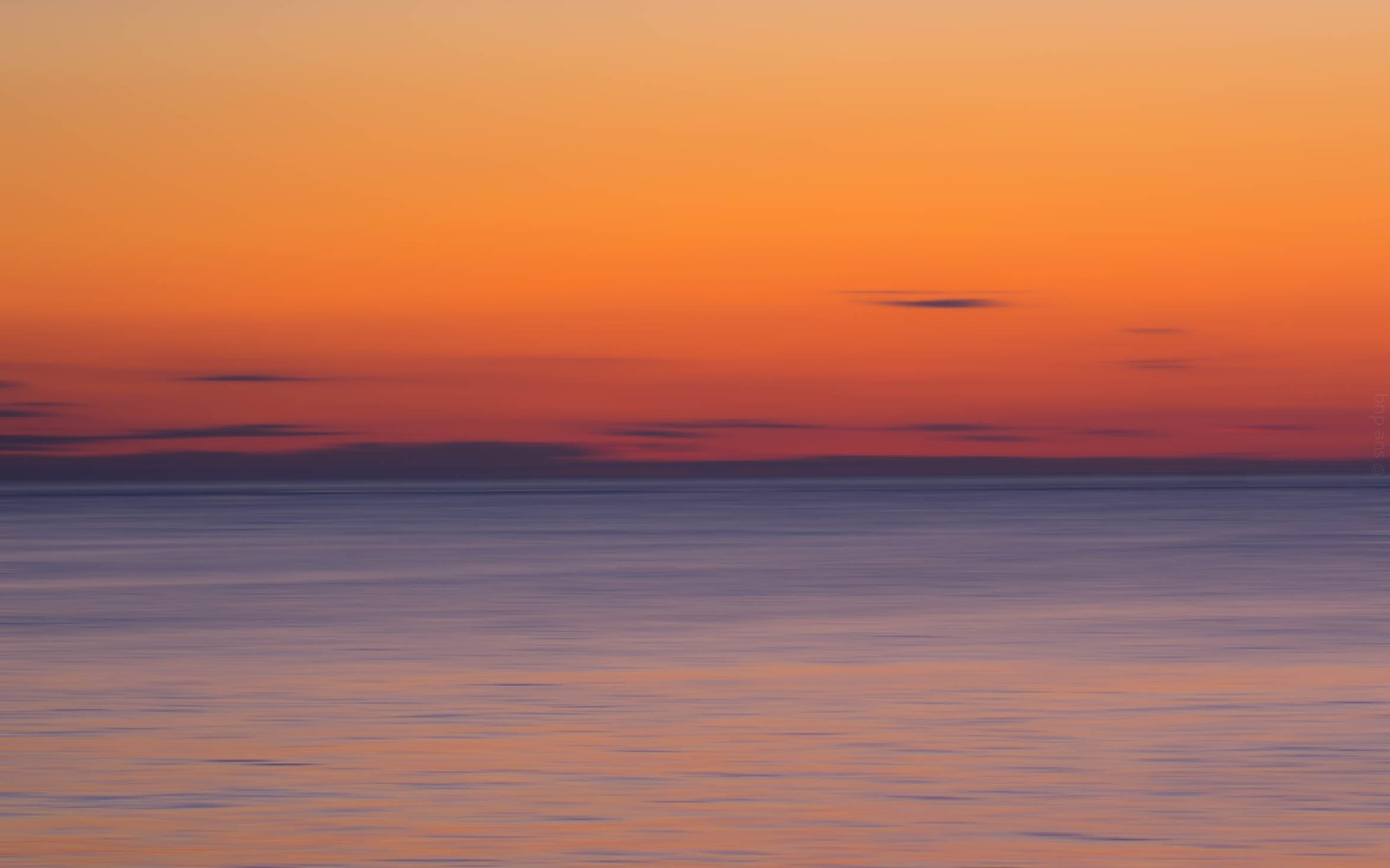 colors of morning by sue_duq