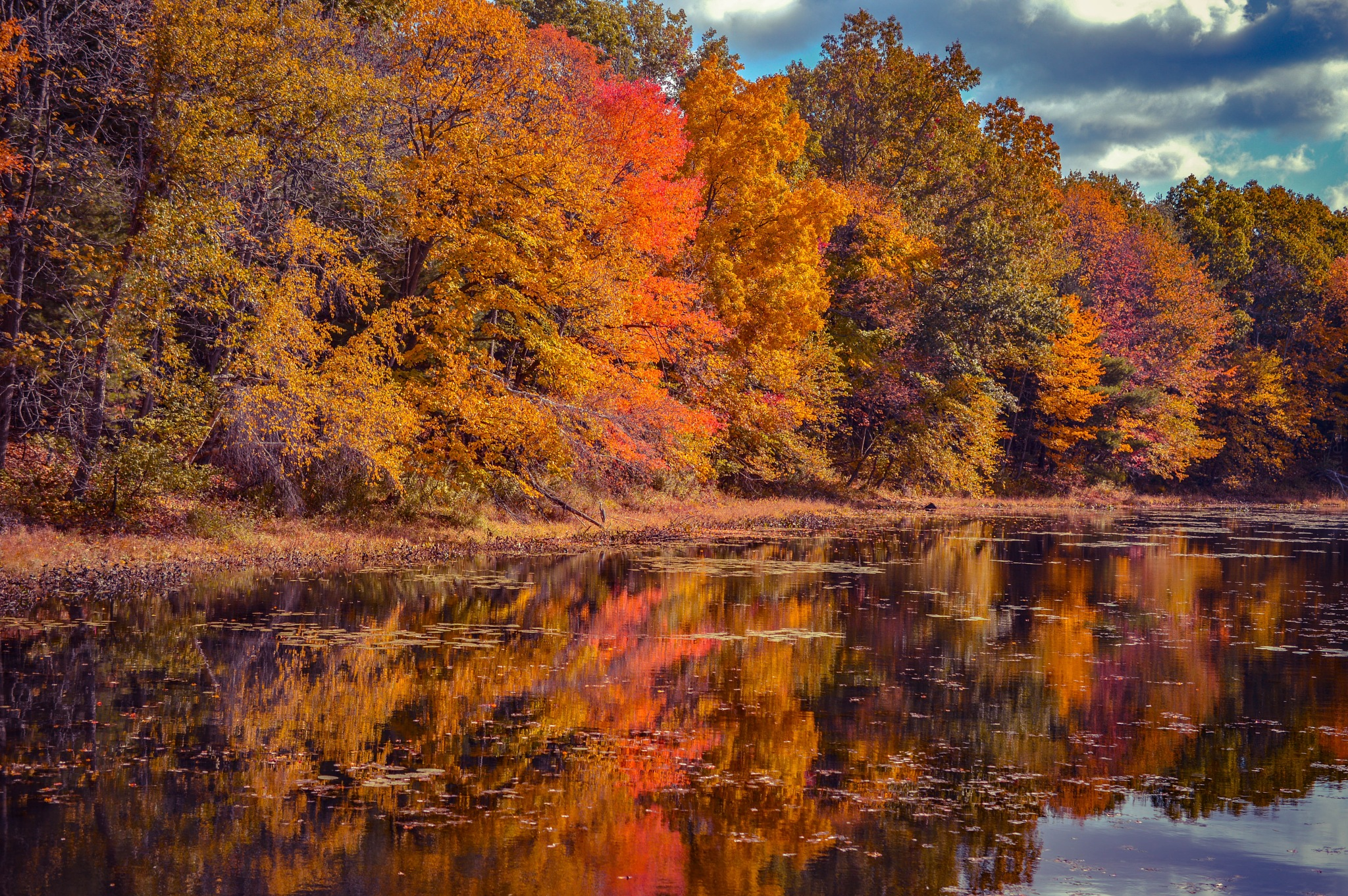 Fall reflections by sue_duq
