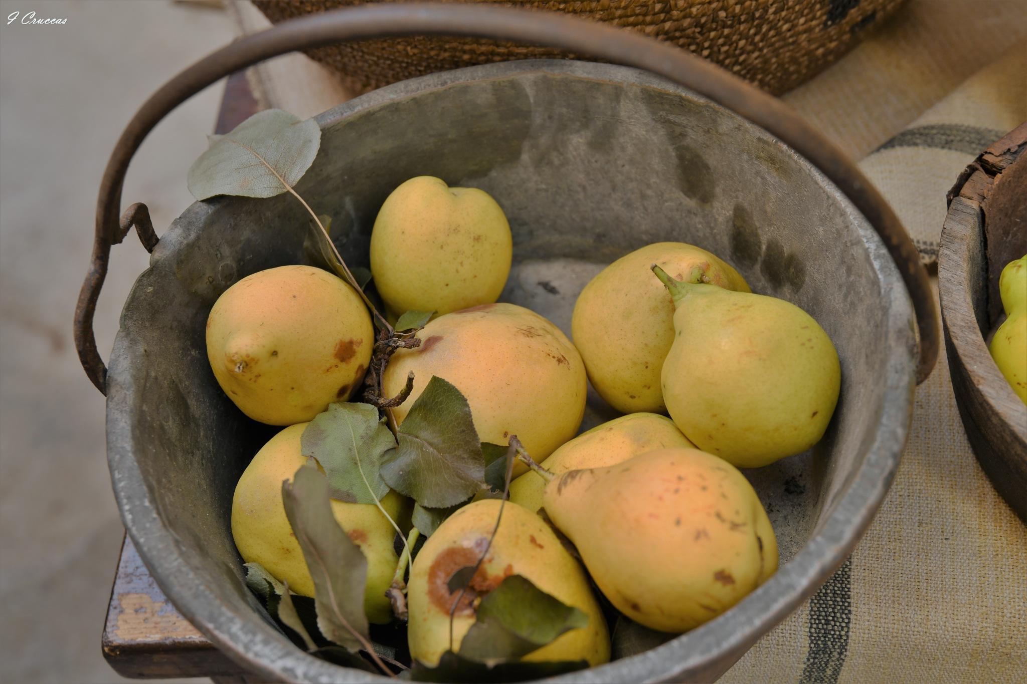 Seasonal fruit by ignazio cruccas