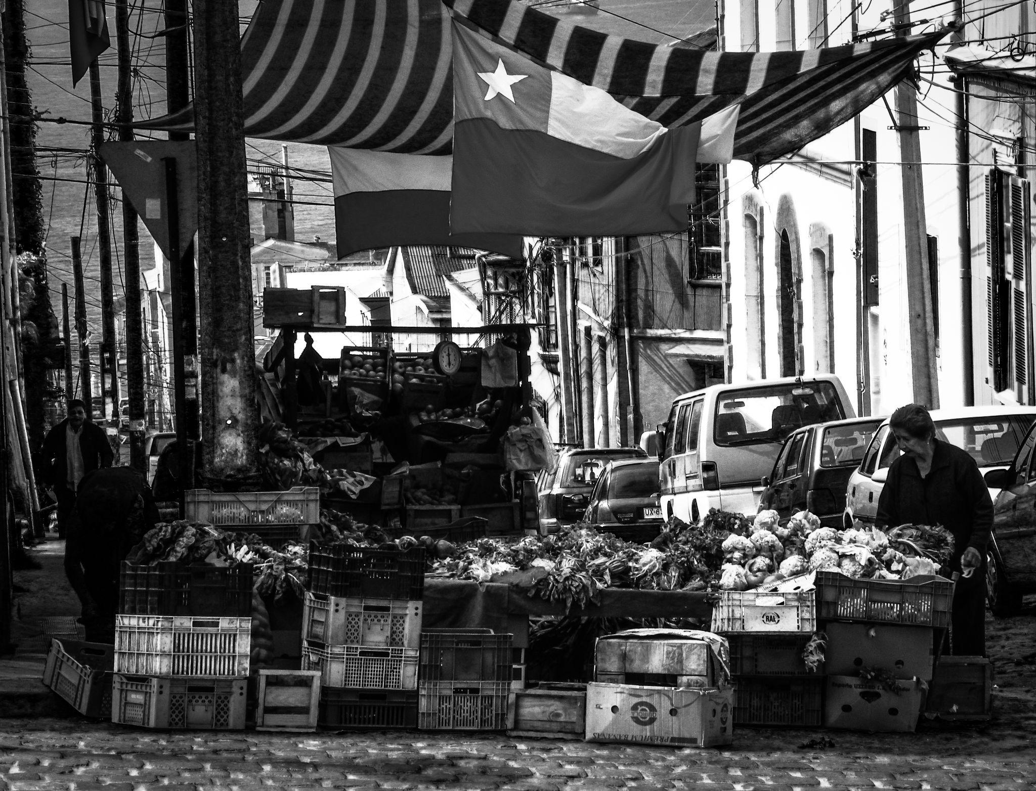 Feria by By3nz