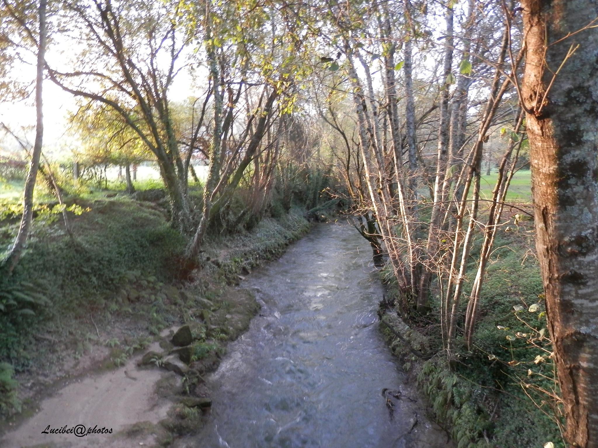 Afluente do rio Lima by lucia.ribeiro.33