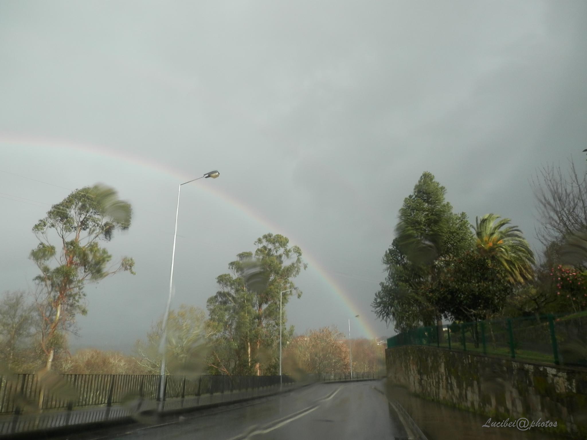 Ao encontro do arco-íris. by lucia.ribeiro.33