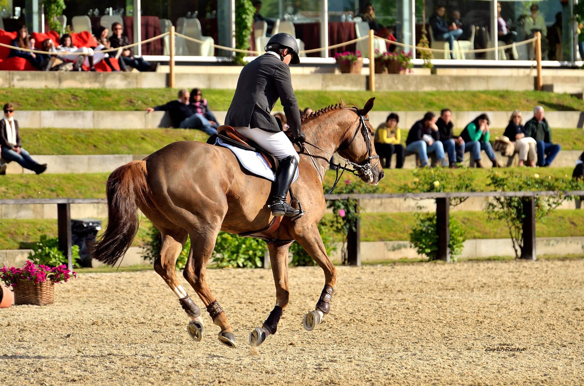 Cavalgando by carlosfiuzar