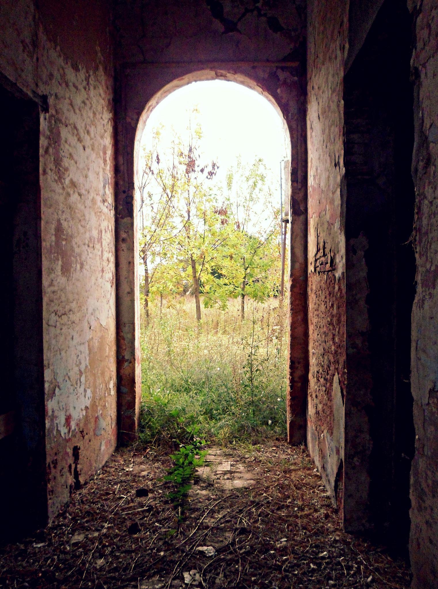 Wish you were here by claudio.spirito.7