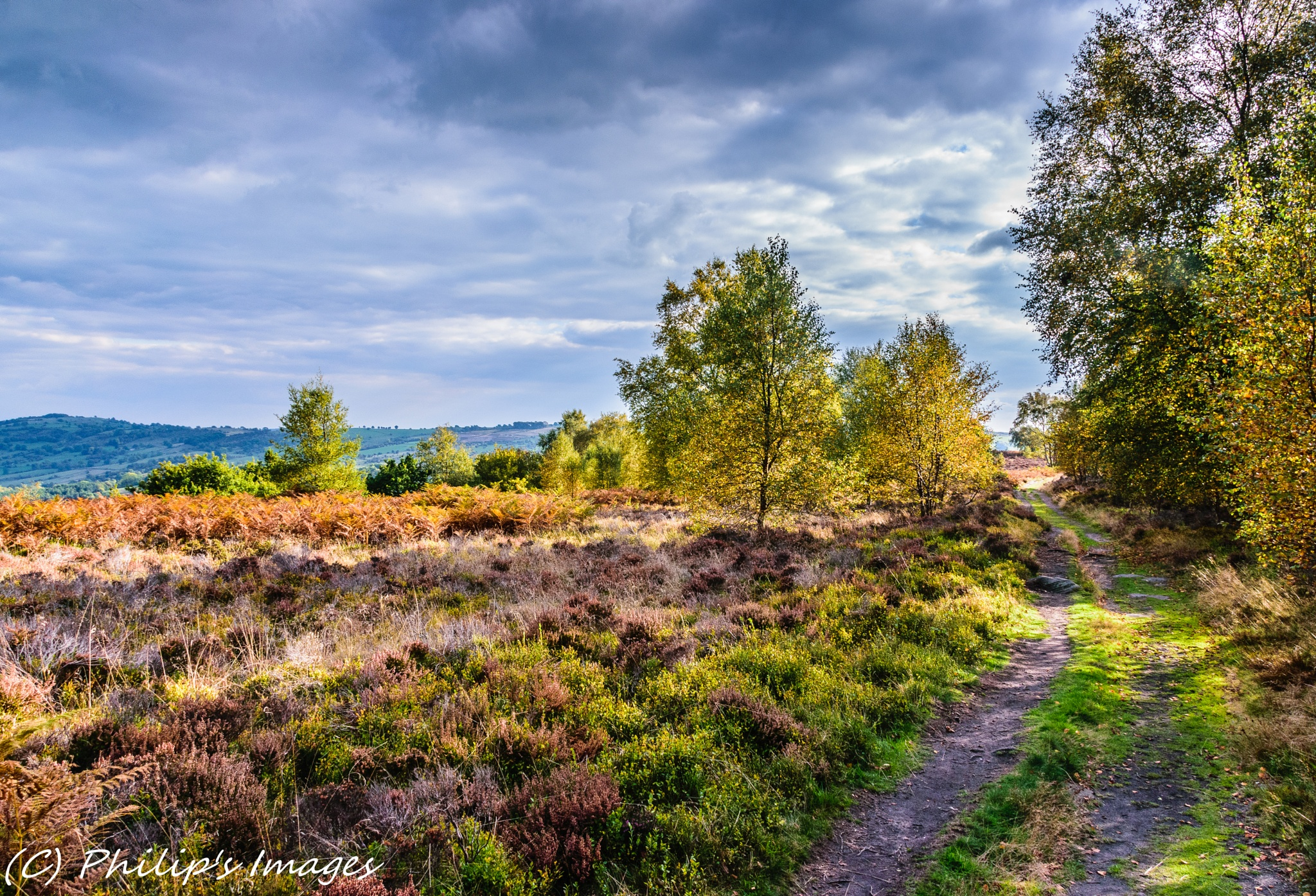Stanton Moor by philips images