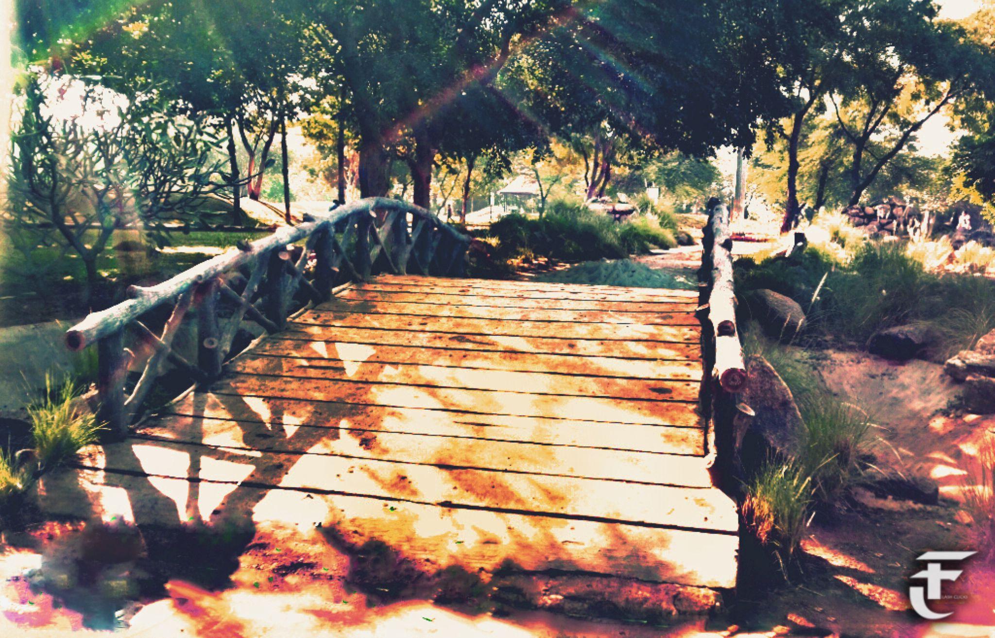 bridge  by pankaj.kokolu