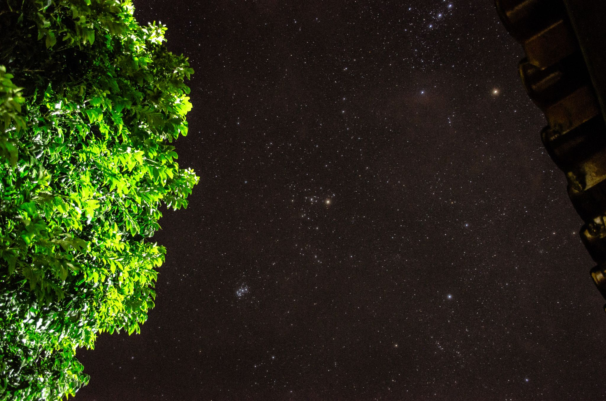 Tree, starry night and old roof by ElianoJr