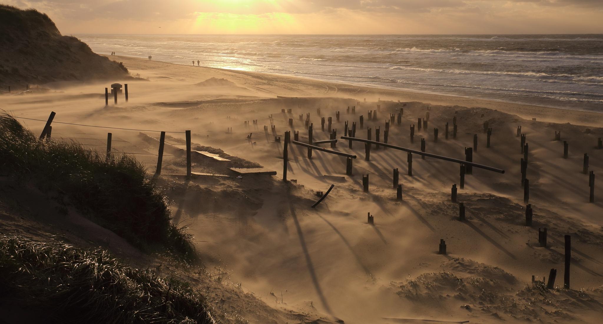 Sand on the move..  by janatlemonsen
