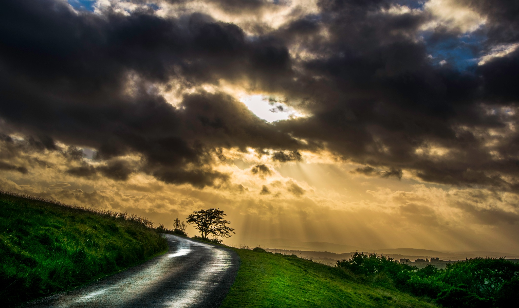 sunlit road by phillip ticehurst